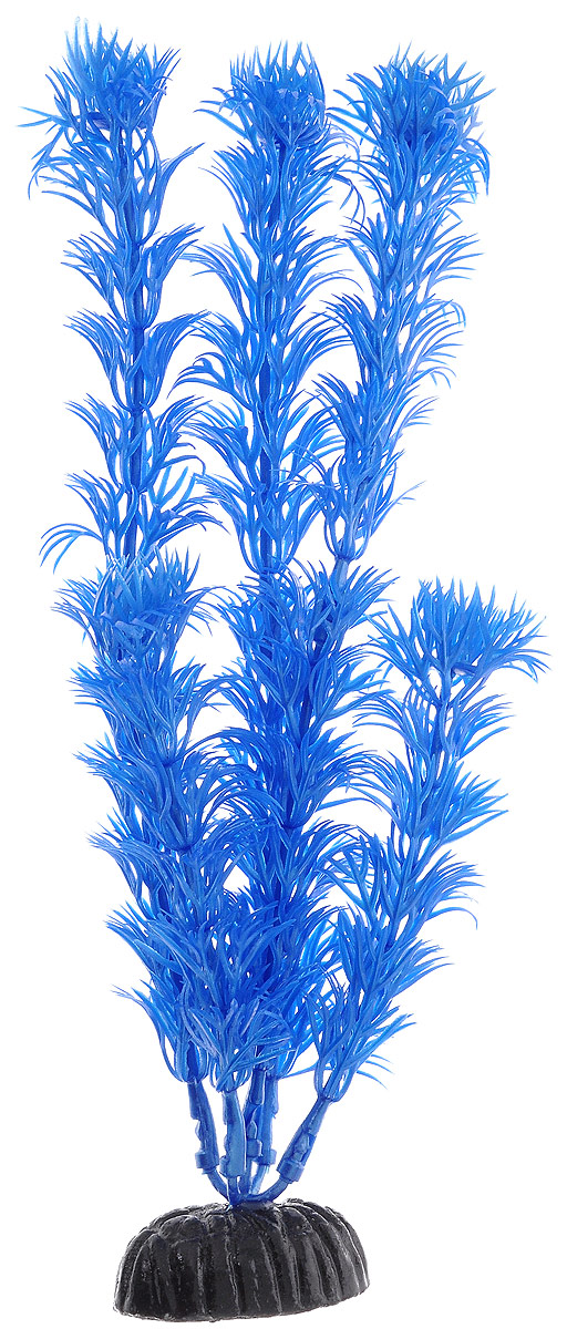 Растение для аквариума Barbus Кабомба, пластиковое, цвет: синий, высота 20 смPlant 016/10Растение Barbus Кабомба, выполненное из высококачественного нетоксичного пластика, станет прекрасным украшением вашего аквариума. Пластиковое растение идеально подходит для дизайна всех видов аквариумов. В воде происходит абсолютная имитация живых растений. Изделие не требует дополнительного ухода. Оно абсолютно безопасно, нейтрально к водному балансу, устойчиво к истиранию краски, подходит как для пресноводного, так и для морского аквариума. Растение для аквариума Barbus Кабомба поможет вам смоделировать потрясающий пейзаж на дне вашего аквариума.Высота растения: 20 см.