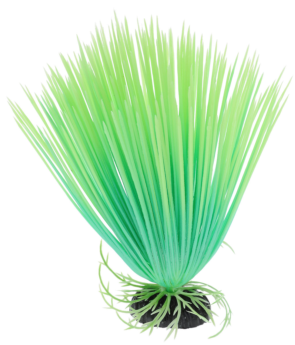 Растение для аквариума Barbus Акорус, пластиковое, светящееся, высота 20 см0120710Растение Barbus Акорус выполнено из высококачественного нетоксичного пластика. Оно светится в темноте и станет оригинальным и необычным украшением вашего аквариума. Изделие не требует дополнительного ухода Оно абсолютно безопасно, нейтрально к водному балансу, устойчиво к истиранию краски, подходит как для пресноводного, так и для морского аквариума. Растение для аквариума Barbus поможет вам смоделировать потрясающий пейзаж на дне вашего аквариума или террариума.Высота растения: 20 см.