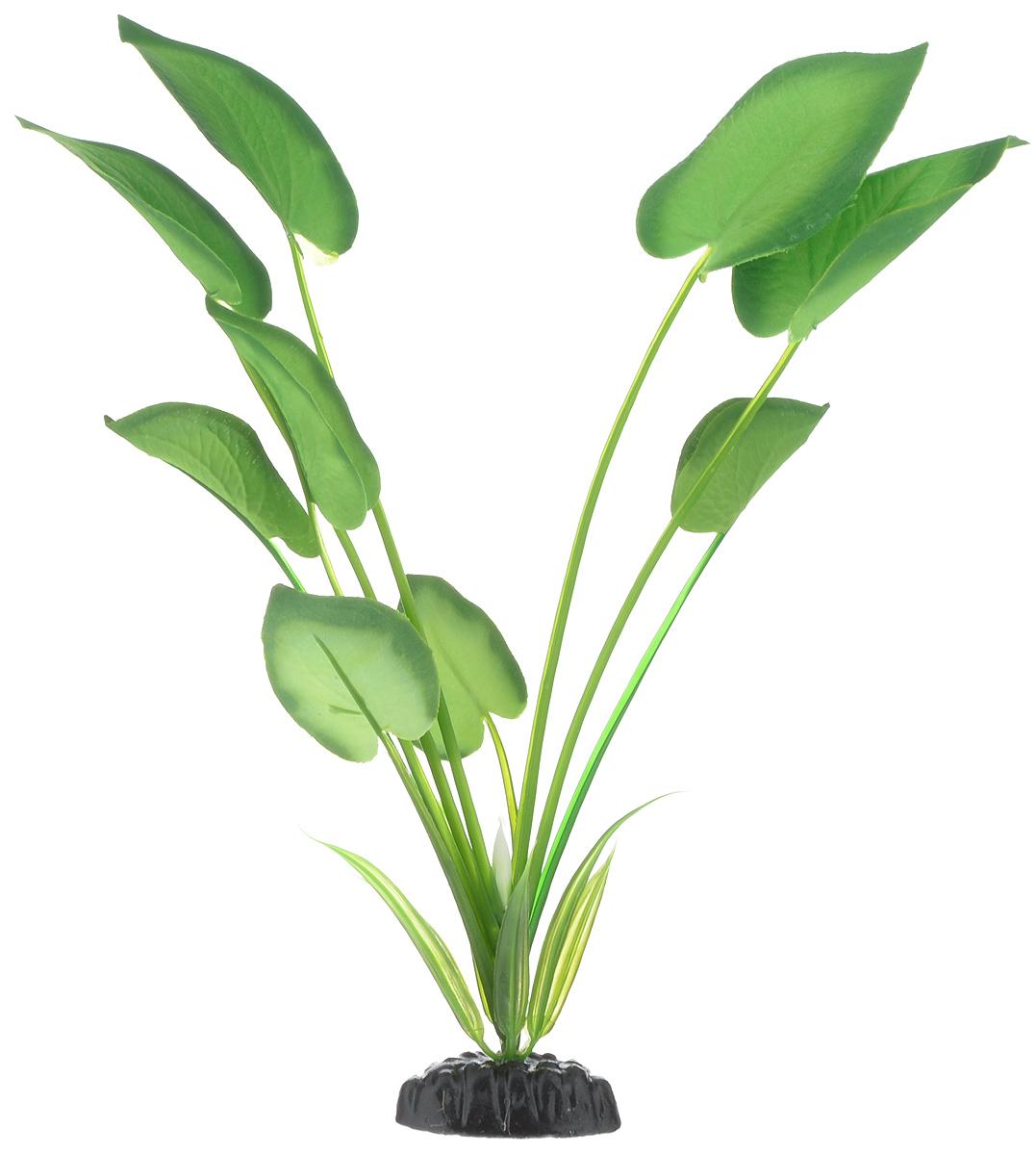 Растение для аквариума Barbus Эхинодорус, шелковое, высота 30 см. Plant 044/30FILTER 012Растение для аквариума Barbus Эхинодорус, выполненное из качественного шелка, станет прекрасным украшением вашего аквариума. Шелковое растение идеально подходит для дизайна всех видов аквариумов. В воде происходит абсолютная имитация живых растений. Изделие не требует дополнительного ухода и просто в применении. Растение абсолютно безопасно, нейтрально к водному балансу, устойчиво к истиранию краски, подходит как для пресноводного, так и для морского аквариума. Растение для аквариума Barbus поможет вам смоделировать потрясающий пейзаж на дне вашего аквариума или террариума. Высота растения: 30 см.