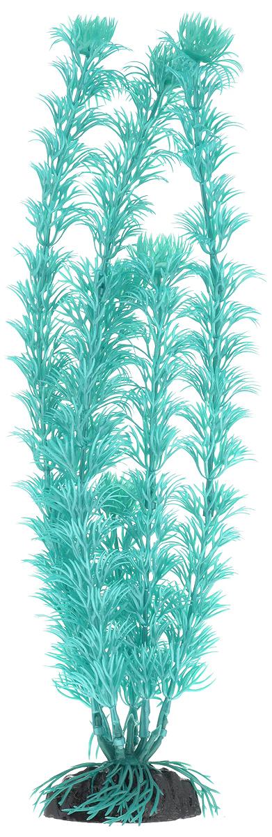 Растение для аквариума Barbus Кабомба, пластиковое, цвет: бирюзовый, высота 30 см0120710Растение для аквариума Barbus Кабомба, выполненное из качественного пластика, станет оригинальным украшением вашего аквариума. Пластиковое растение идеально подходит для дизайна всех видов аквариумов. Оно абсолютно безопасно, нейтрально к водному балансу, устойчиво к истиранию краски, подходит как для пресноводного, так и для морского аквариума. Растение для аквариума Barbus поможет вам смоделировать потрясающий пейзаж на дне вашего аквариума или террариума. Высота растения: 30 см.