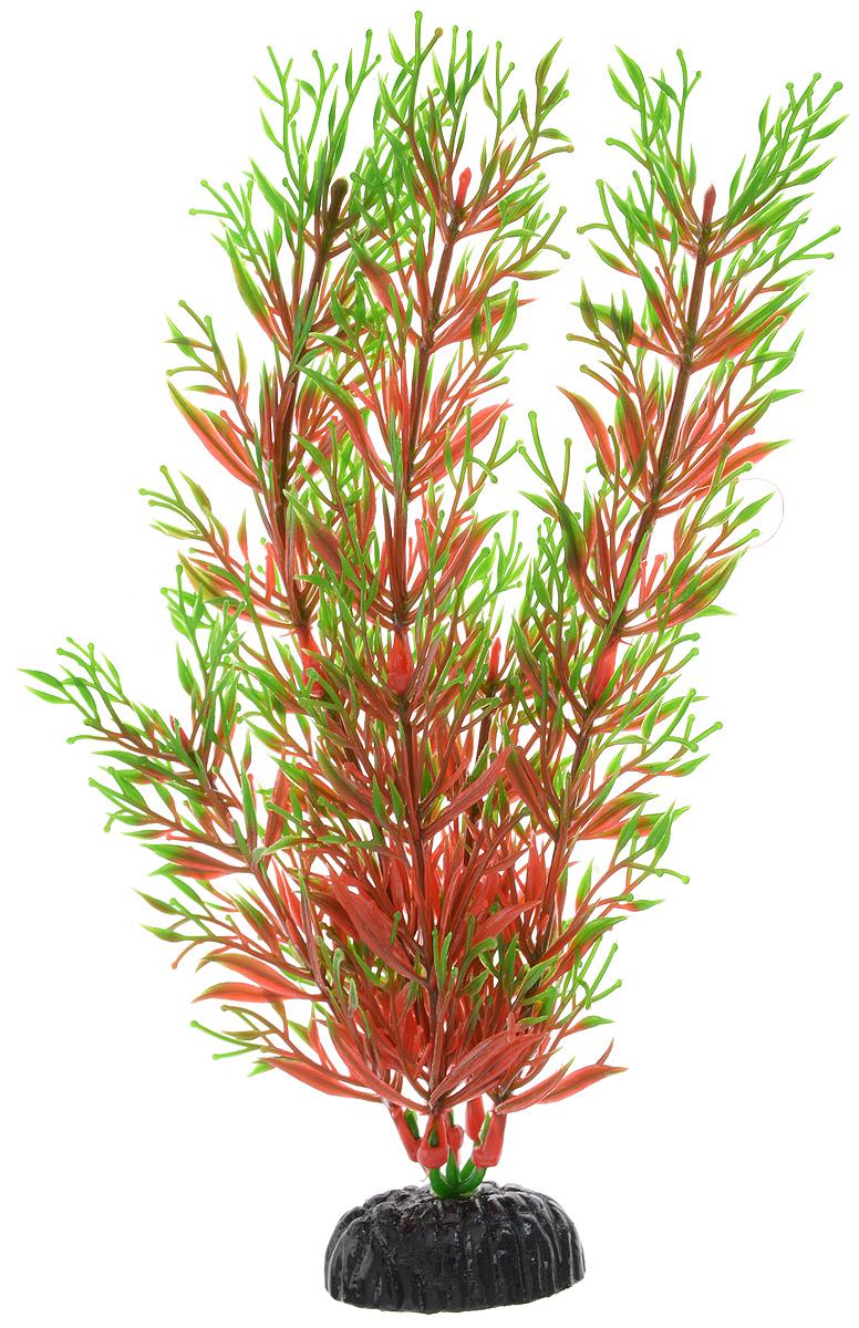 Растение для аквариума Barbus Перистолистник красный, пластиковое, высота 20 см0120710Растение для аквариума Barbus Перистолистник красный, выполненное из качественного пластика, станет оригинальным украшением вашего аквариума. Пластиковое растение идеально подходит для дизайна всех видов аквариумов. Оно абсолютно безопасно, не токсично, нейтрально к водному балансу, устойчиво к истиранию краски, подходит как для пресноводного, так и для морского аквариума. Растение для аквариума Barbus поможет вам смоделировать потрясающий пейзаж на дне вашего аквариума или террариума. Высота растения: 20 см.