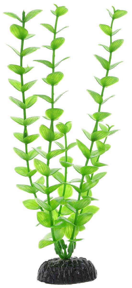 Растение для аквариума Barbus Бакопа зеленая, пластиковое, высота 20 см0120710Растение для аквариума Barbus Бакопа зеленая, выполненное из качественного пластика, станет оригинальным украшением вашего аквариума. Пластиковое растение идеально подходит для дизайна всех видов аквариумов. Оно абсолютно безопасно, нейтрально к водному балансу, устойчиво к истиранию краски, подходит как для пресноводного, так и для морского аквариума. Растение для аквариума Barbus поможет вам смоделировать потрясающий пейзаж на дне вашего аквариума или террариума. Высота растения: 20 см.