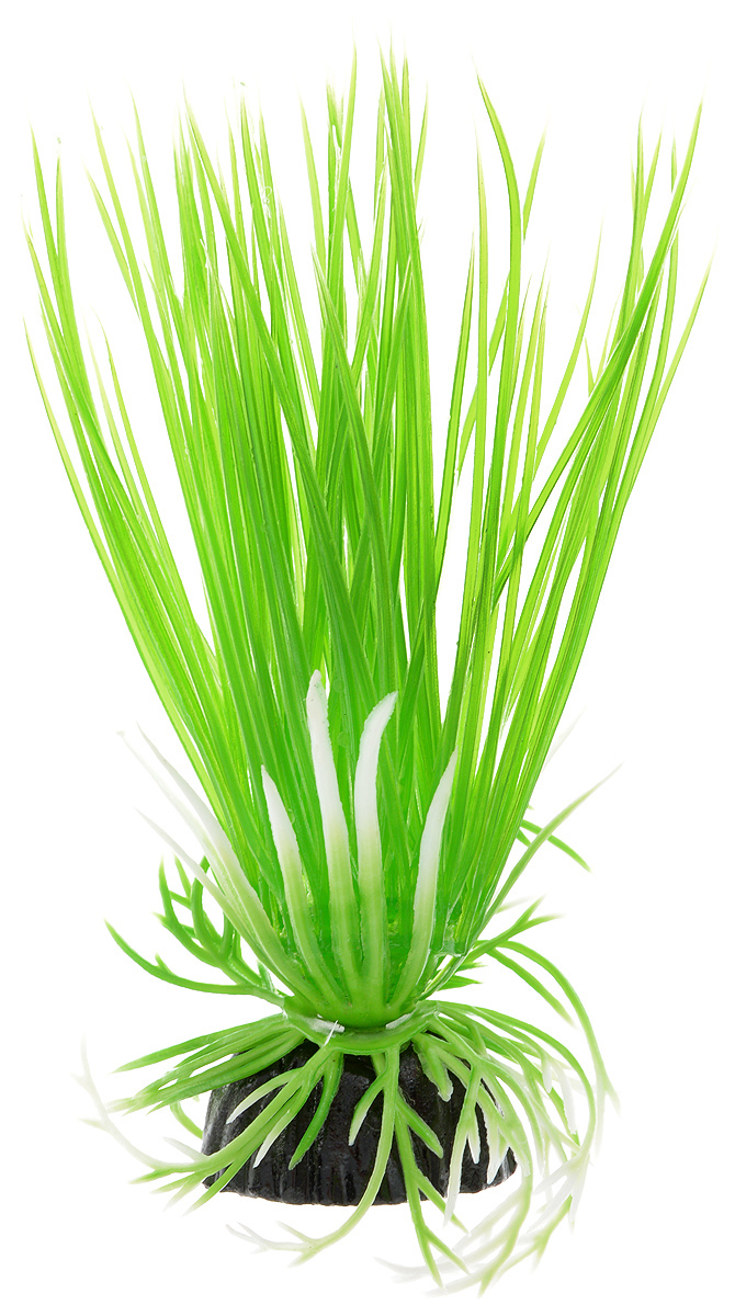 Растение для аквариума Barbus Акорус, пластиковое, высота 10 см растение для аквариума barbus людвигия ползучая красная пластиковое высота 30 см
