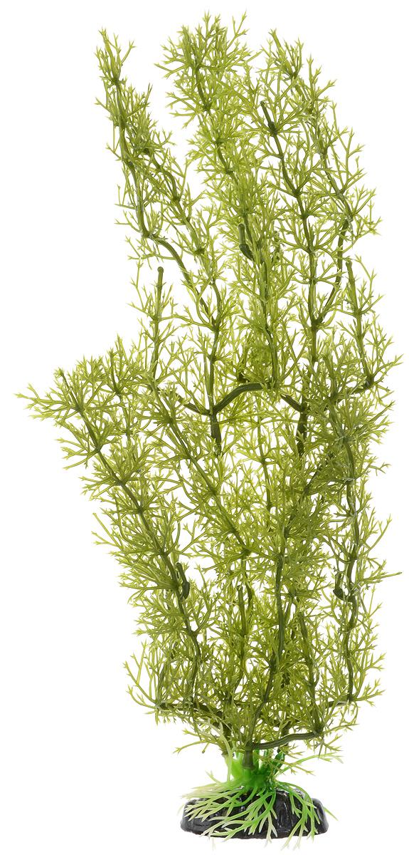 Растение для аквариума Barbus Яванский мох, пластиковое, высота 30 смPlant 024/30Растение для аквариума Barbus Яванский мох, выполненное из качественного пластика, станет оригинальным украшением вашего аквариума. Пластиковое растение идеально подходит для дизайна всех видов аквариумов. Оно абсолютно безопасно, нейтрально к водному балансу, устойчиво к истиранию краски, подходит как для пресноводного, так и для морского аквариума. Растение для аквариума Barbus поможет вам смоделировать потрясающий пейзаж на дне вашего аквариума или террариума. Высота растения: 30 см.