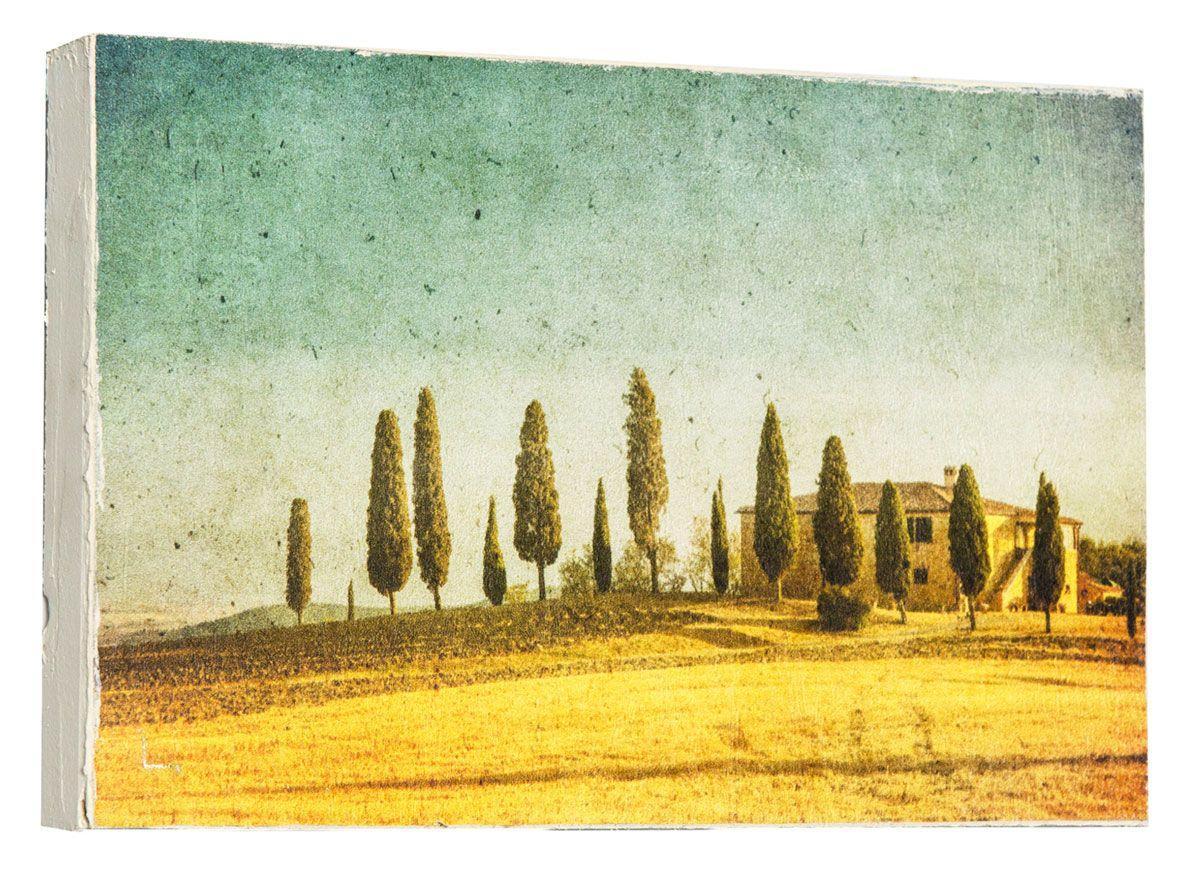 Картина Mister Poster Винтажные деревья, 22 х 14,5 см25051 7_желтыйКартина Mister Poster - это высококачественная репродукция на деревянной раме. Лицевая поверхность имитирует штукатурку или натуральный холст, края окрашены вручную специальным декоративным составом.Современные технологии, уникальное оборудование и оригинальные чернила, используемые при изготовлении, делают постер устойчивым к выцветанию, а также гарантируют стойкость к воздействию негативных внешних факторов. Интерьер дома и офиса, в котором находится человек, в значительной степени влияет на его настроение и работоспособность. Правильное оформление интерьера создает благоприятный психологический климат, улучшает настроение и мотивирует. Добавьте «красок» в ваш интерьер и, возможно, в вашу жизнь.