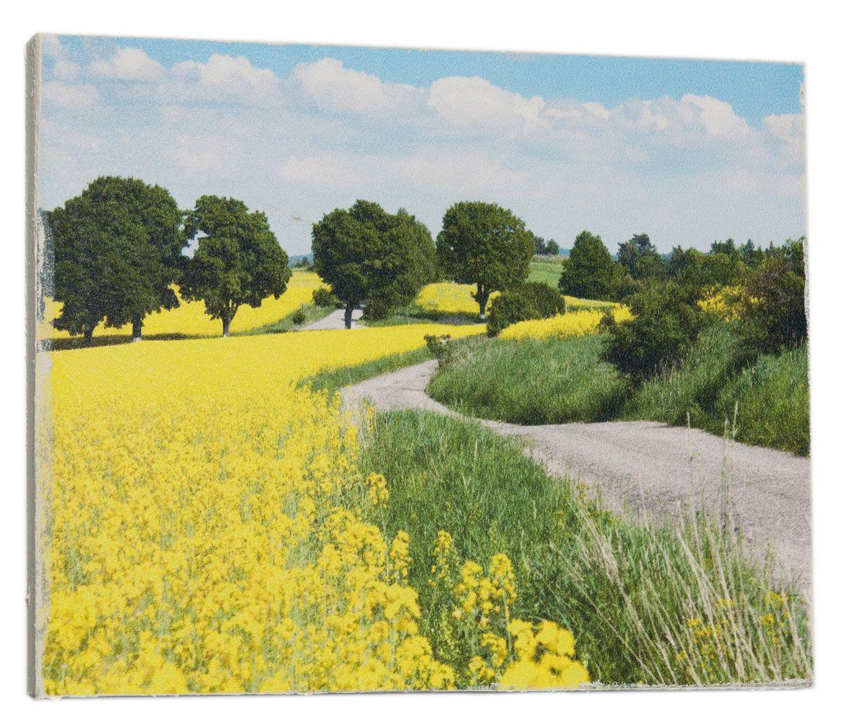 Картина Mister Poster Дорога посреди желтых цветов, 32 х 24 см97526Картина Mister Poster - это высококачественная репродукция на деревянной раме. Лицевая поверхность имитирует штукатурку или натуральный холст, края окрашены вручную специальным декоративным составом.Современные технологии, уникальное оборудование и оригинальные чернила, используемые при изготовлении, делают постер устойчивым к выцветанию, а также гарантируют стойкость к воздействию негативных внешних факторов. Интерьер дома и офиса, в котором находится человек, в значительной степени влияет на его настроение и работоспособность. Правильное оформление интерьера создает благоприятный психологический климат, улучшает настроение и мотивирует. Добавьте «красок» в ваш интерьер и, возможно, в вашу жизнь.