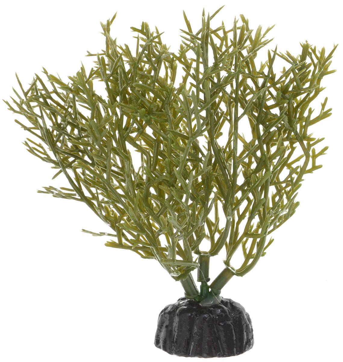 Растение для аквариума Barbus Яванский мох, пластиковое, высота 10 см растение для аквариума barbus людвигия ползучая красная пластиковое высота 30 см