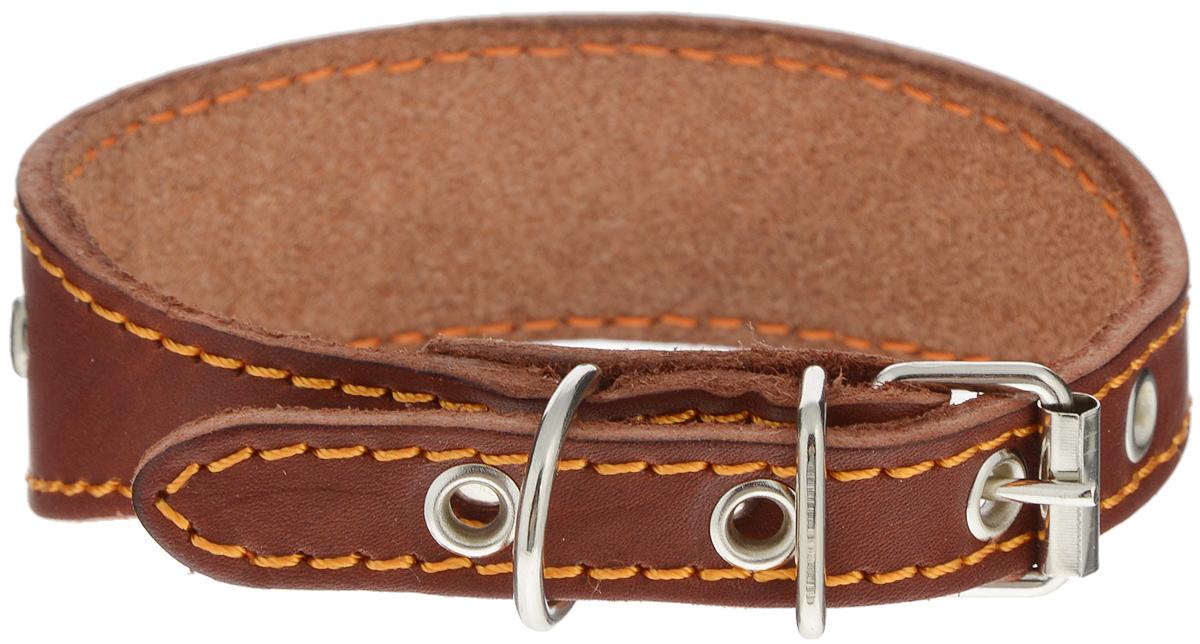 """Ошейник для собак Каскад """"Классика"""", цвет: коричневый, ширина 3 см, обхват шеи 25-32 см. 00000032к"""
