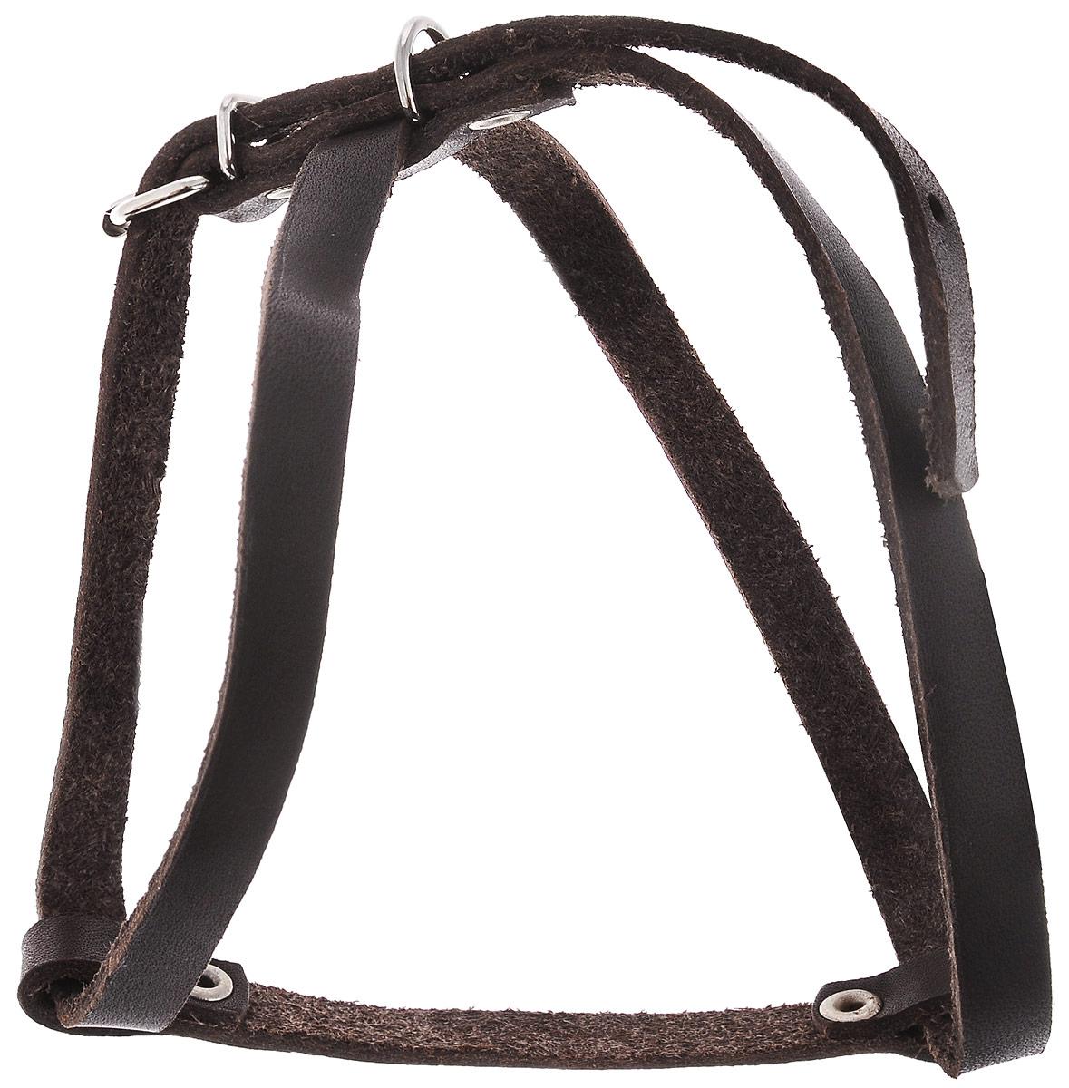 Шлейка для собак и кошек Каскад Восьмерка, ширина 1 см, обхват груди 30-37 см01010201кШлейка Каскад Восьмерка, изготовленная из и натуральной кожи, подходит для собак мелких пород и кошек. Крепкие металлические элементы делают ее надежной и долговечной. Шлейка - это альтернатива ошейнику. Правильно подобранная шлейка не стесняет движения питомца, не натирает кожу, поэтому животное чувствует себя в ней уверенно и комфортно. Изделие отличается высоким качеством, удобством и универсальностью. Размер регулируется при помощи пряжек, зафиксированных в одном из 7 отверстий.Обхват шеи: 24-28 см. Обхват груди: 30-37 см.Ширина шлейки: 1см.