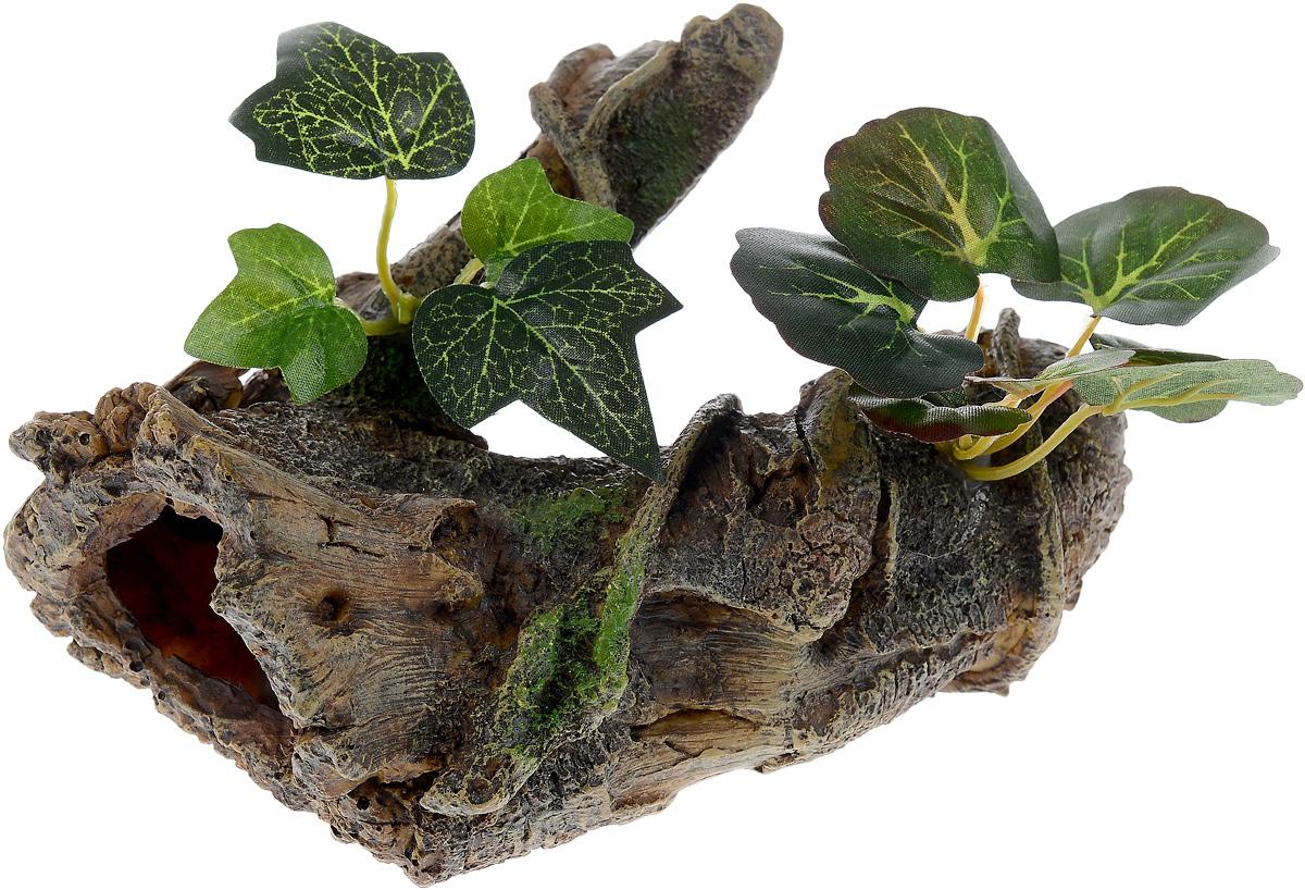 Декорация для аквариума Barbus Коряга с растением, 17 х 12 х 12 см0120710Декорация для аквариума Barbus Коряга с растением, выполненная из высококачественного нетоксичного полирезина, станет прекрасным украшением вашего аквариума. Изделие отличается реалистичным исполнением с множеством мелких деталей и отверстий. Ведь многие обитатели аквариума используют декорации как укрытия, в которых они живут и размножаются. Декорация абсолютно безопасна, нейтральна к водному балансу, устойчива к истиранию краски, подходит как для пресноводного, так и для морского аквариума. Благодаря декорациям Barbus вы сможете смоделировать потрясающий пейзаж на дне вашего аквариума или террариума.