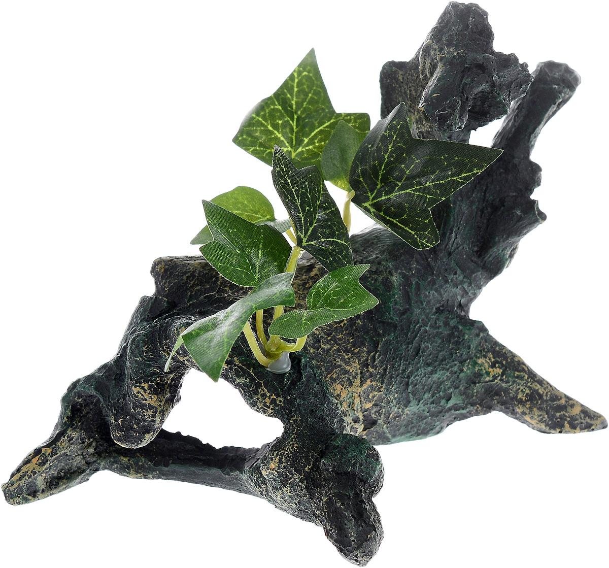 Декорация для аквариума Barbus Коряга с растением, 18 х 10,5 х 13 см0120710Декорация для аквариума Barbus Коряга с растением, выполненная из высококачественного нетоксичного полирезина, станет прекрасным украшением вашего аквариума. Изделие отличается реалистичным исполнением с множеством мелких деталей и отверстий. Ведь многие обитатели аквариума используют декорации как укрытия, в которых они живут и размножаются. Декорация абсолютно безопасна, нейтральна к водному балансу, устойчива к истиранию краски, подходит как для пресноводного, так и для морского аквариума. Благодаря декорациям Barbus вы сможете смоделировать потрясающий пейзаж на дне вашего аквариума или террариума.