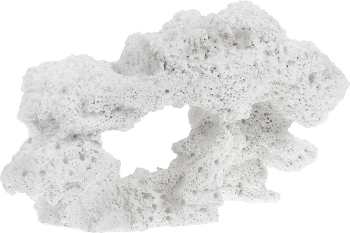 Декорация для аквариума Barbus Камень, 31 х 16,5 х 18 см0120710Декорация для аквариума Barbus Камень, выполненная из высококачественного нетоксичного полирезина, станет прекрасным украшением вашего аквариума. Изделие отличается реалистичным исполнением с множеством мелких деталей. Декорация абсолютно безопасна, нейтральна к водному балансу, устойчива к истиранию краски, подходит как для пресноводного, так и для морского аквариума. Благодаря декорациям Barbus вы сможете смоделировать потрясающий пейзаж на дне вашего аквариума или террариума.