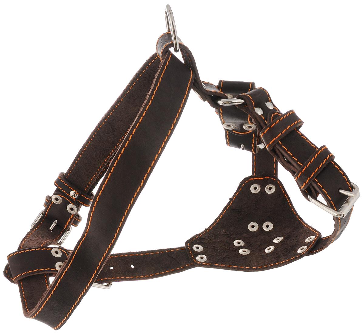 Шлейка для собак Каскад Классика, цвет: коричневый, ширина 2,5 см, обхват груди 69-77 см0120710Шлейка Каскад Классика, изготовленная из и натуральной кожи, подходит для собак средних и крупных пород. Крепкие металлические элементы делают ее надежной и долговечной. Шлейка - это альтернатива ошейнику. Правильно подобранная шлейка не стесняет движения питомца, не натирает кожу, поэтому животное чувствует себя в ней уверенно и комфортно.Изделие отличается высоким качеством, удобством и универсальностью.Размер регулируется при помощи пряжек, зафиксированных в одном из 5 отверстий.Обхват шеи: 44-60 см. Обхват груди: 69-77 см.Ширина шлейки: 2,5 см.
