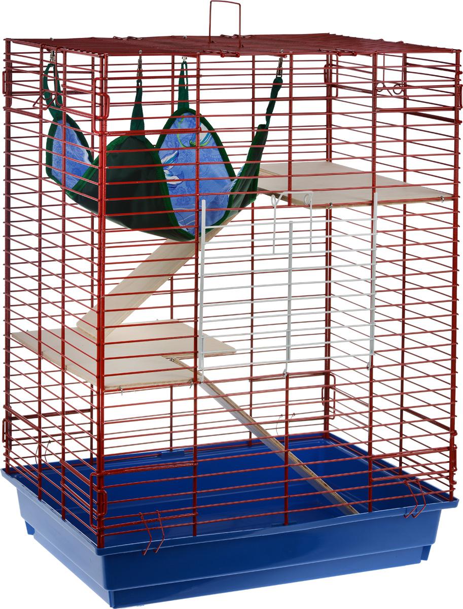 Клетка для шиншилл и хорьков ЗооМарк, цвет: синий поддон, красная решетка, 59 х 41 х 79 см. 725дкК-3_темно-желтыйКлетка ЗооМарк, выполненная из полипропилена и металла, подходит для шиншилл и хорьков. Большая клетка оборудована длинными лестницами и гамаком. Изделие имеет яркий поддон, удобно в использовании и легко чистится. Сверху имеется ручка для переноски. Такая клетка станет уединенным личным пространством и уютным домиком для грызуна.
