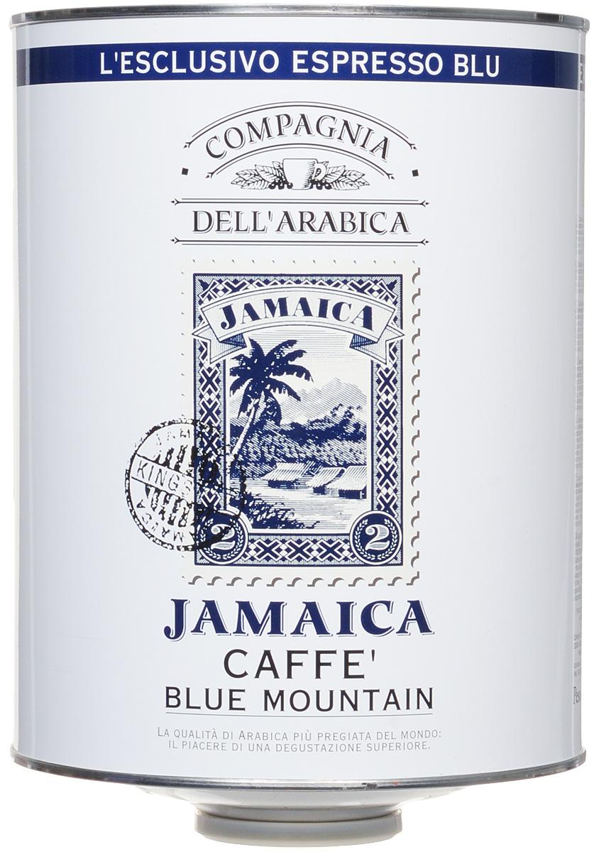 Compagnia DellArabica Jamaica Blue Mountain кофе в зернах, 1,5 кгКК004Jamaica Blue Mountain по праву считается одним из самых элитных сортов 100% арабики. Жемчужина кофейной коллекции Compagnia DellArabica.Нотки карибского рома, аромат драгоценной ванили, полутона миндаля и какао, а так же деликатный намек на бархатный аромат дорогого табака. Вулканические земли района Blue Mountain доступны для плантаций в крайне ограниченном количестве, поэтому данный сорт ценится производителями на вес золота. Показателем бережного отношения к урожаю служит тот факт, что это единственный кофе, который транспортируется не в мешках, а в дубовых бочках – как вино.