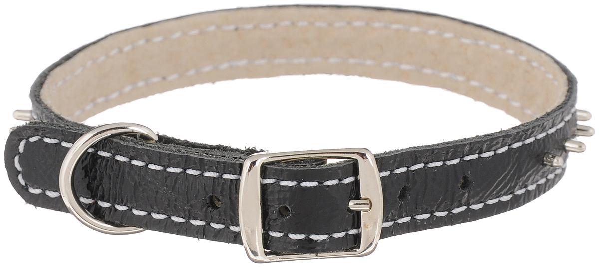 Ошейник для собак Каскад Классика, двойной, с шипами, цвет: черный, ширина 1,2 см, обхват шеи 20-24 см00012005чОшейник для собак Каскад Классика изготовлен из натуральной кожи, устойчивой к влажности и перепадам температур. Клеевой слой, сверхпрочные нити, крепкие металлические элементы делают ошейник надежным и долговечным.Изделие отличается высоким качеством, удобством и универсальностью. По всей длине ошейник украшен металлическими шипами.Размер ошейника регулируется при помощи пряжки, зафиксированной на одном из 5 отверстий. Минимальный обхват шеи: 20 см. Максимальный обхват шеи: 24 см. Ширина ошейника: 1,2 см.