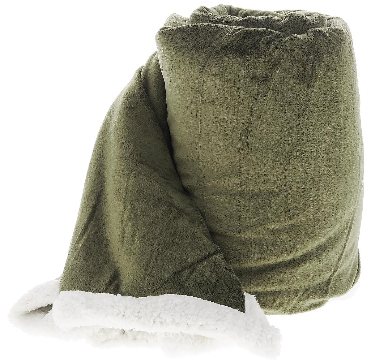 Плед Arya Микро, цвет: темно-зеленый, 160 х 220 см50.18.73.0093Легкий, мягкий и яркий плед Arya Микро изготовлен из микрофибры. Пледы из микрофибры - это незаменимая вещь и практичная часть интерьера. Микрофибра славится не только своей уникальной структурой, которая сохраняет тепло, но и он еще очень мягкий, и приятный на ощупь. Плед из микрофибры отлично дополнит и украсит любой дом, дачу, незаменим также в автомобиле.Плед Arya Микро - это бюджетный подарок, хороший вариант подарка не только для родных и близких, но и для коллег в качестве корпоративного подарка, на любой праздник.Размер пледа: 160 х 220 см.
