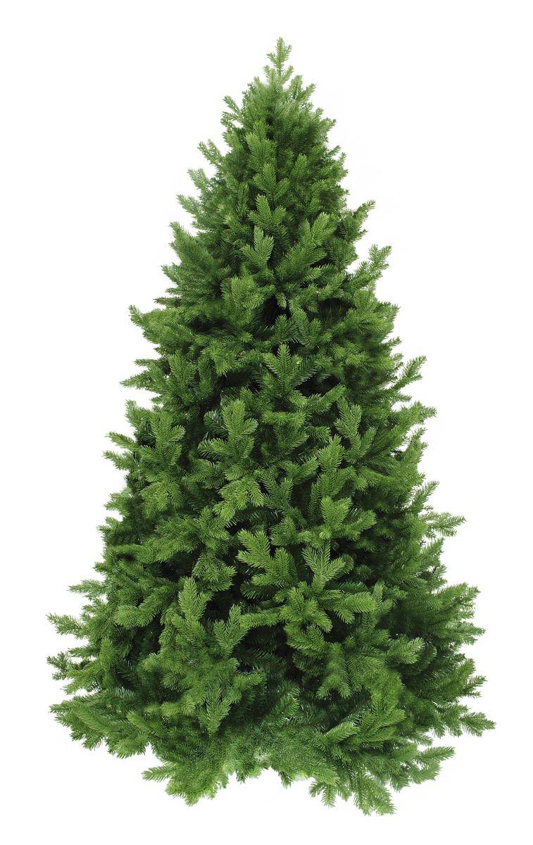 Ель искусственная Triumph Tree  Царская , цвет: зеленый, высота 185 см - Елки