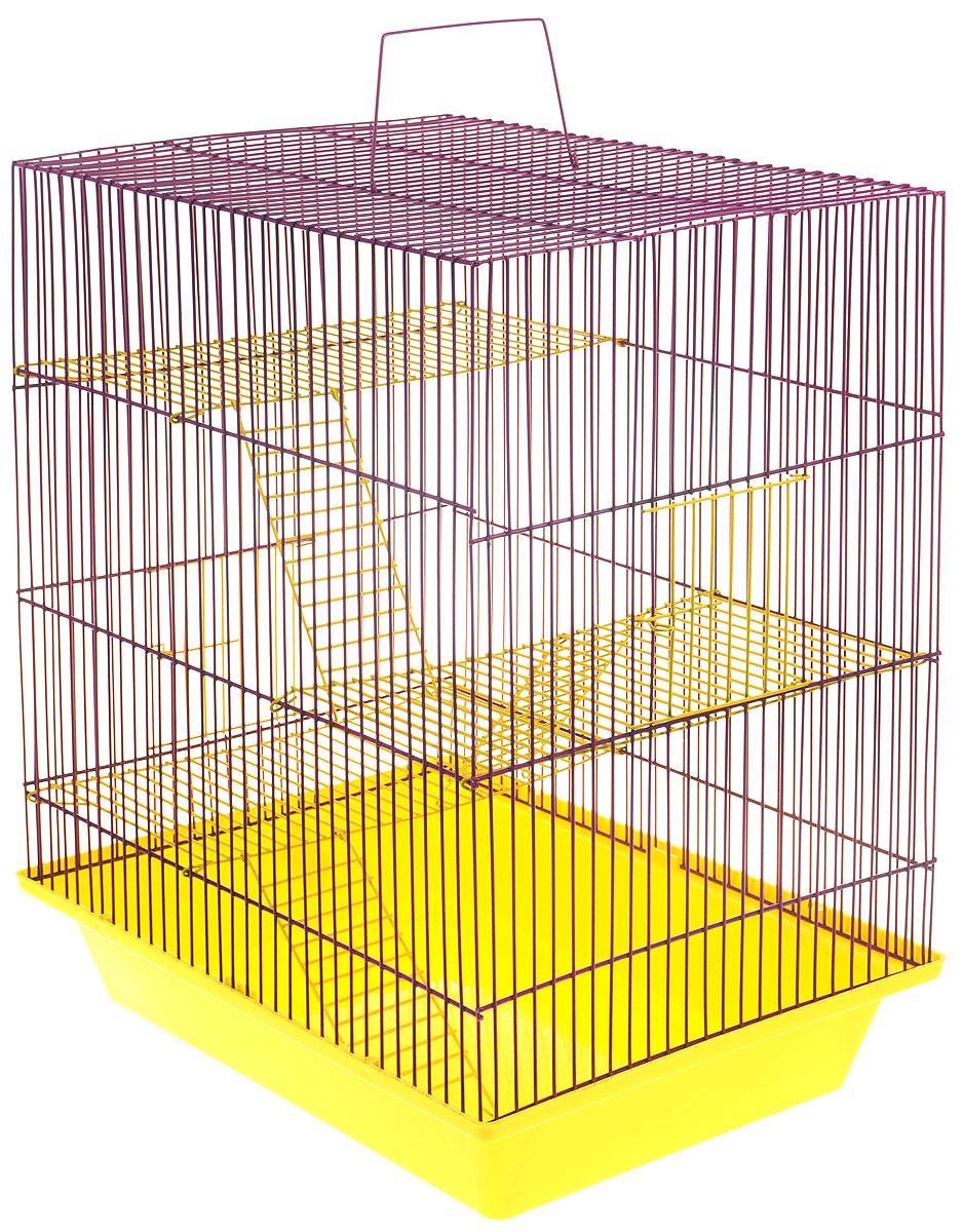 Клетка для грызунов ЗооМарк Гризли, 4-этажная, цвет: желтый поддон, фиолетовая решетка, желтые этажи, 41 х 30 х 50 см. 240ж240ж_желтый, фиолетовыйКлетка ЗооМарк Гризли, выполненная из полипропилена и металла, подходит для мелких грызунов. Изделие четырехэтажное. Клетка имеет яркий поддон, удобна в использовании и легко чистится. Сверху имеется ручка для переноски. Такая клетка станет уединенным личным пространством и уютным домиком для маленького грызуна.