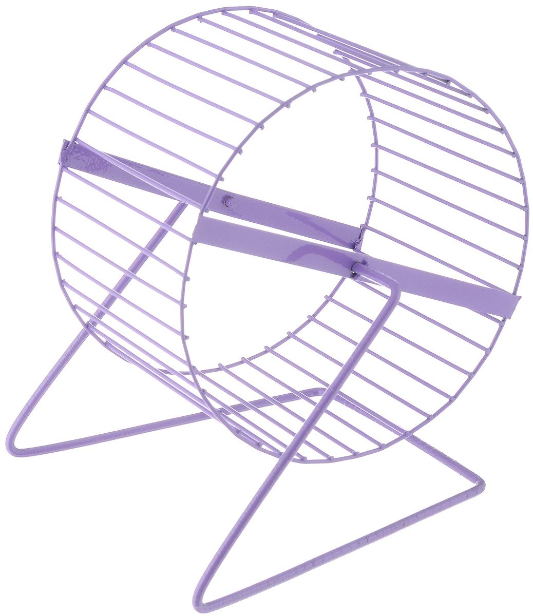 Колесо для грызунов ЗооМарк, цвет: сиреневый, диаметр 16 см0120710Колесо для грызунов ЗооМарк, выполненное изпрочного металла, очень удобное и бесшумное.Поместив его в клетку, вы обеспечите своему питомцунеобходимую физическую активность.Предназначено для хомяков имышей. Диаметр колеса: 16 см.Высота колеса: 18 см.