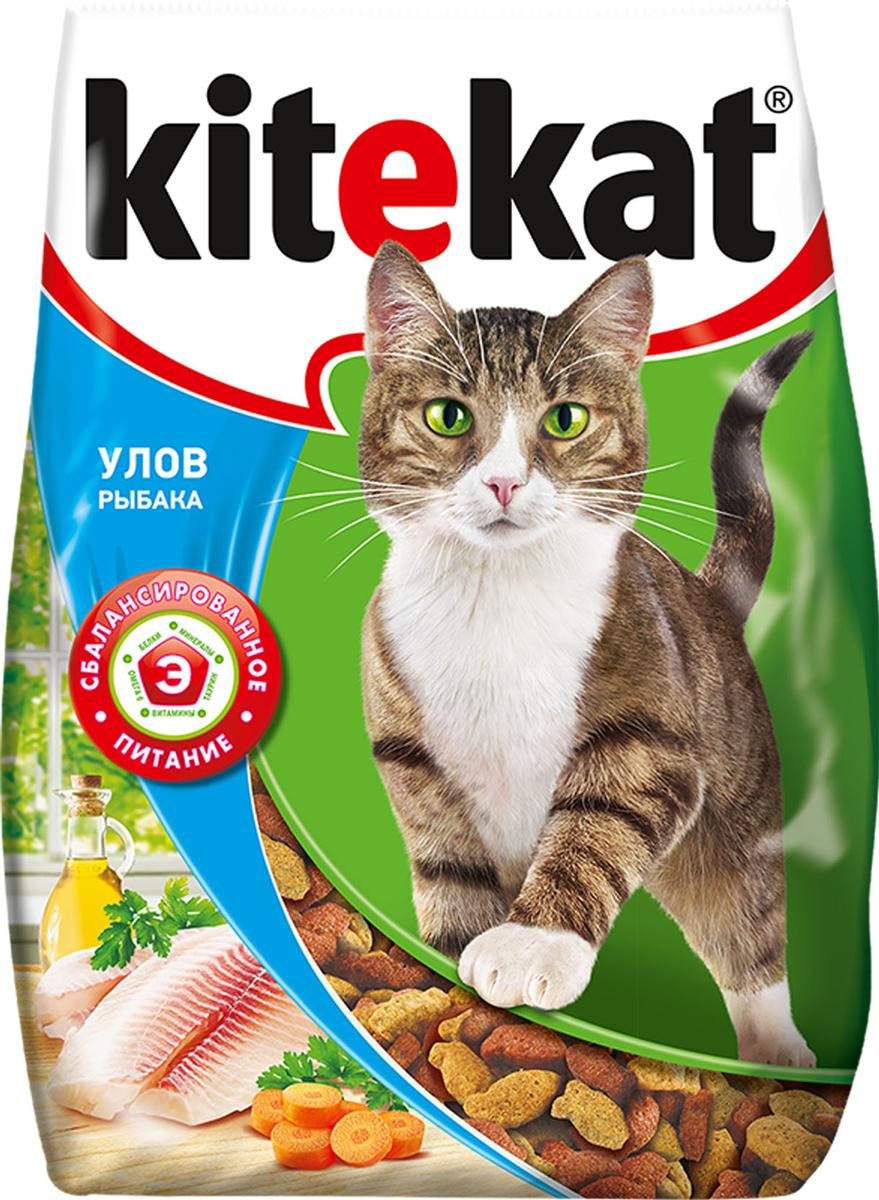 Корм сухой для кошек Kitekat, улов рыбака, 350 г56681Сухой корм Kitekat - это специально разработанная еда для кошек с оптимально сбалансированным содержанием белков, витаминов и микроэлементов. Уникальная формула Kitekat включает в себя все необходимые для здоровья компоненты: - белки - для поддержания мышечного тонуса, силы и энергии; - жирные кислоты - для здоровой кожи и блестящей шерсти; - кальций, фосфор, витамин D - для крепости костей и зубов; - таурин - для остроты зрения и стабильной работы сердца; - витамины и минералы, натуральные волокна - для хорошего пищеварения, правильного обмена веществ, укрепления здоровья. Корм Kitekat идеально подходит для вашего любимца как надежный источник жизненных сил. Товар сертифицирован.