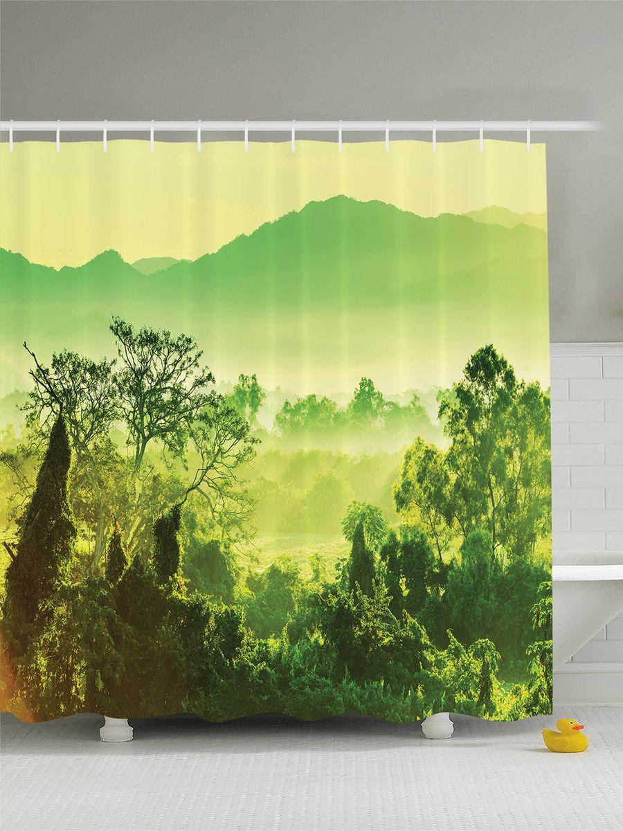 Штора для ванной комнаты Magic Lady Джунгли в зеленом тумане, 180 х 200 смшв_4154Штора Magic Lady Джунгли в зеленом тумане, изготовленная из высококачественного сатена (полиэстер 100%), отлично дополнит любой интерьер ванной комнаты. При изготовлении используются специальные гипоаллергенные чернила для прямой печати по ткани, безопасные для человека.В комплекте: 1 штора, 12 крючков. Обращаем ваше внимание, фактический цвет изделия может незначительно отличаться от представленного на фото.