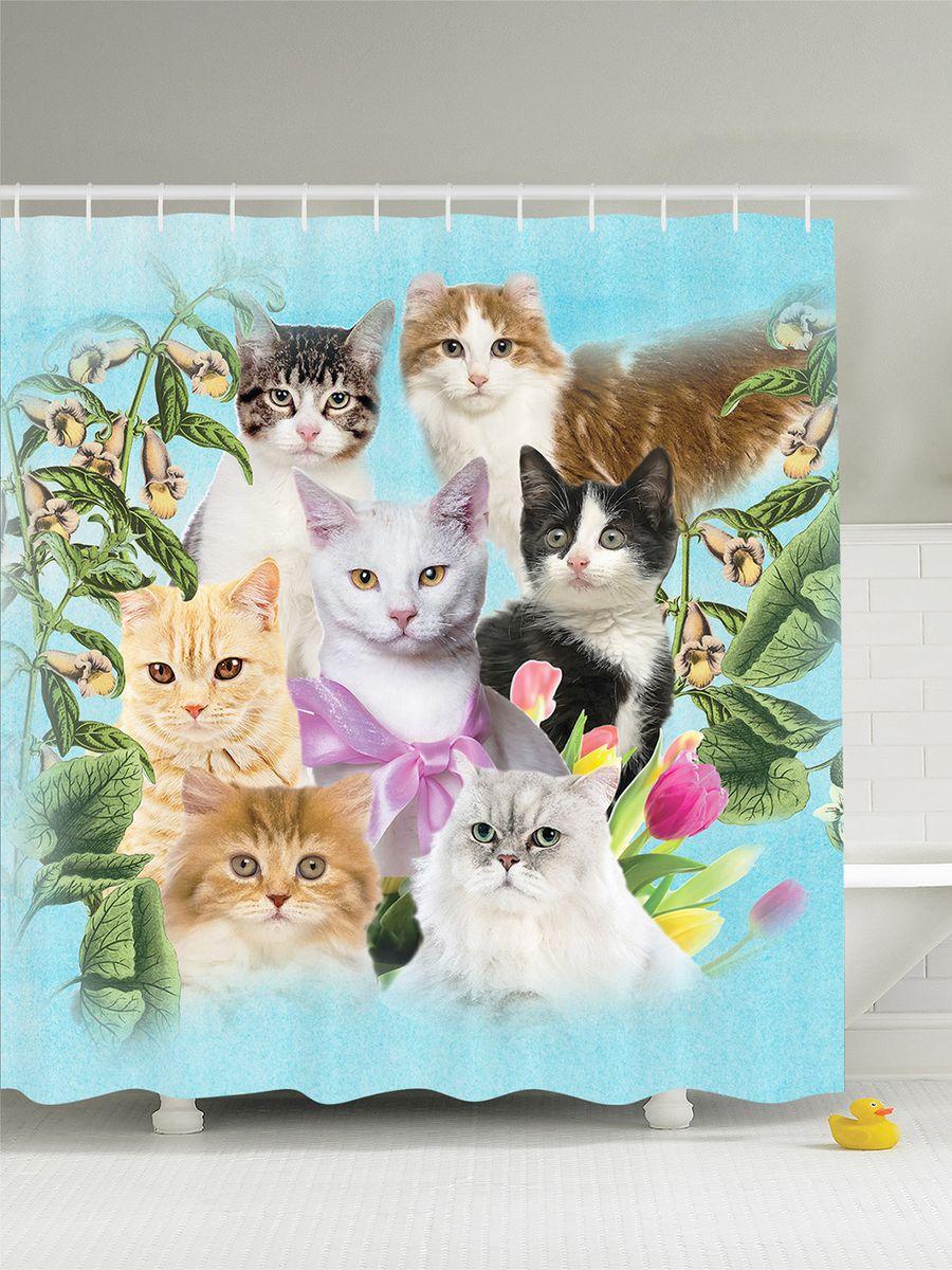 Штора для ванной комнаты Magic Lady Дружная семья кошек, 180 х 200 смшв_12180Штора Magic Lady Дружная семья кошек, изготовленная из высококачественного сатена (полиэстер 100%), отлично дополнит любой интерьер ванной комнаты. При изготовлении используются специальные гипоаллергенные чернила для прямой печати по ткани, безопасные для человека.В комплекте: 1 штора, 12 крючков. Обращаем ваше внимание, фактический цвет изделия может незначительно отличаться от представленного на фото.