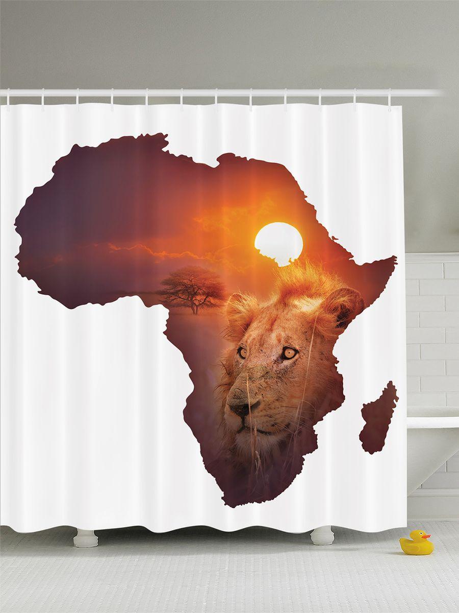 Штора для ванной комнаты Magic Lady Мечты об Африке, 180 х 200 см391602Штора Magic Lady Мечты об Африке, изготовленная из высококачественного сатена (полиэстер 100%), отлично дополнит любой интерьер ванной комнаты. При изготовлении используются специальные гипоаллергенные чернила для прямой печати по ткани, безопасные для человека.В комплекте: 1 штора, 12 крючков. Обращаем ваше внимание, фактический цвет изделия может незначительно отличаться от представленного на фото.