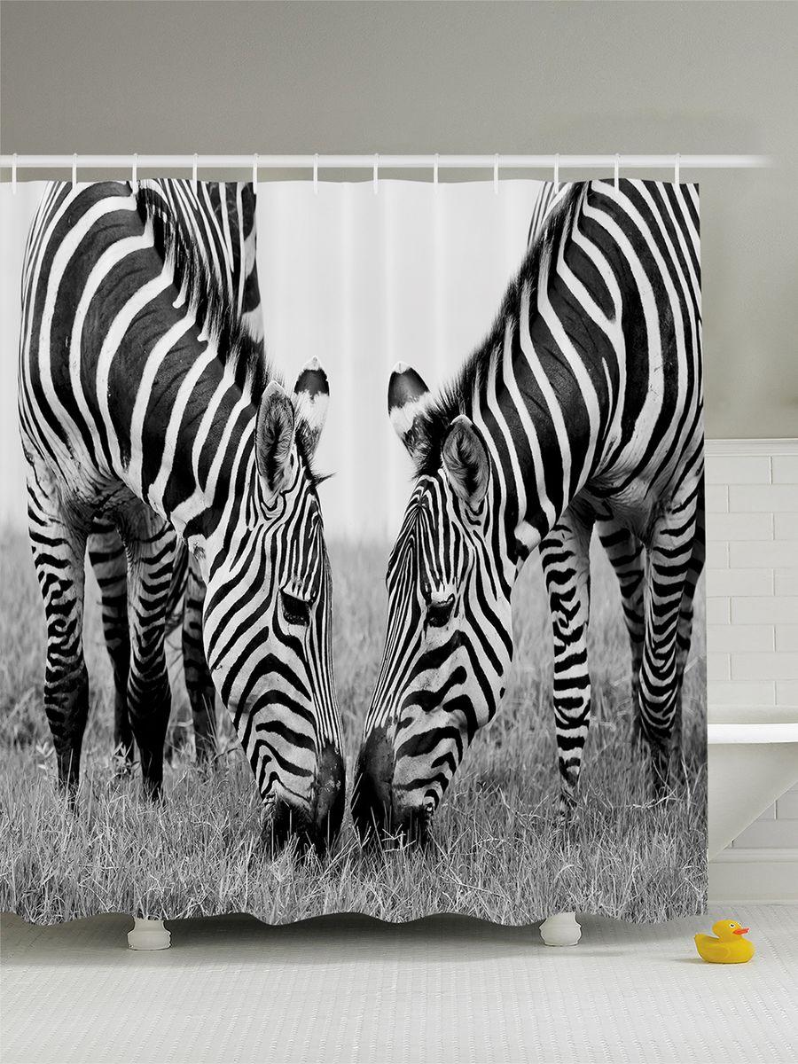 Штора для ванной комнаты Magic Lady Две зебры, 180 х 200 смшв_8201Штора Magic Lady Две зебры, изготовленная из высококачественного сатена (полиэстер 100%), отлично дополнит любой интерьер ванной комнаты. При изготовлении используются специальные гипоаллергенные чернила для прямой печати по ткани, безопасные для человека.В комплекте: 1 штора, 12 крючков. Обращаем ваше внимание, фактический цвет изделия может незначительно отличаться от представленного на фото.