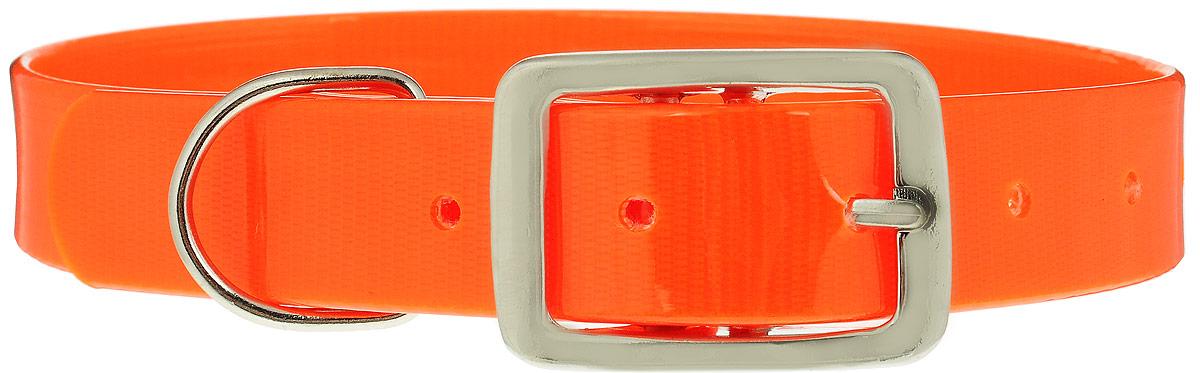 Ошейник для собак Каскад Синтетик, цвет: оранжевый, ширина 2,5 см, обхват шеи 39-51,5 см25628Ошейник для собак Каскад Синтетик изготовлен из высокотехнологичного биотана (нейлон, термопластичный полиуретан). Сверхпрочный ошейник удобен и практичен в использовании, не выгорает, устойчив к влажности, не рвется и не деформируется. Размер ошейника регулируется с помощью металлической пряжки, которая фиксируется на одном из 6 отверстий изделия. Яркий ошейник Каскад Синтетик идеально подойдет для активных собак, для прогулок на природе и охоты.Минимальный обхват шеи: 39 см. Максимальный обхват шеи: 51,5 см. Ширина: 2,5 см.