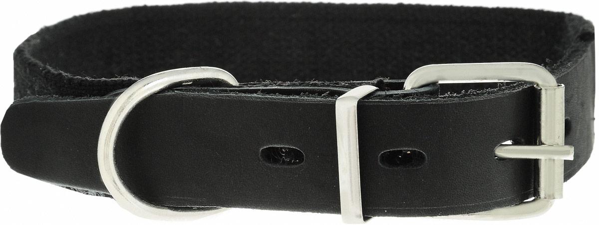 Ошейник брезентовый Каскад Классика, для собак, цвет: черный, ширина 2,5 см, обхват шеи 39-46 см92690Ошейник для собак Каскад Классика изготовлен из брезентовой ткани и натуральной кожи. Он устойчив к влажности и перепадам температур. Клеевой слой, сверхпрочные нити, крепкие металлические элементы делают ошейник надежным и долговечным.Изделие отличается не только исключительной надежностью и удобством, но и привлекательным дизайном.Размер ошейника регулируется при помощи пряжки, зафиксированной на двух из 4 отверстий. Минимальный обхват шеи: 39 см. Максимальный обхват шеи: 46 см. Ширина ошейника: 2,5 см.