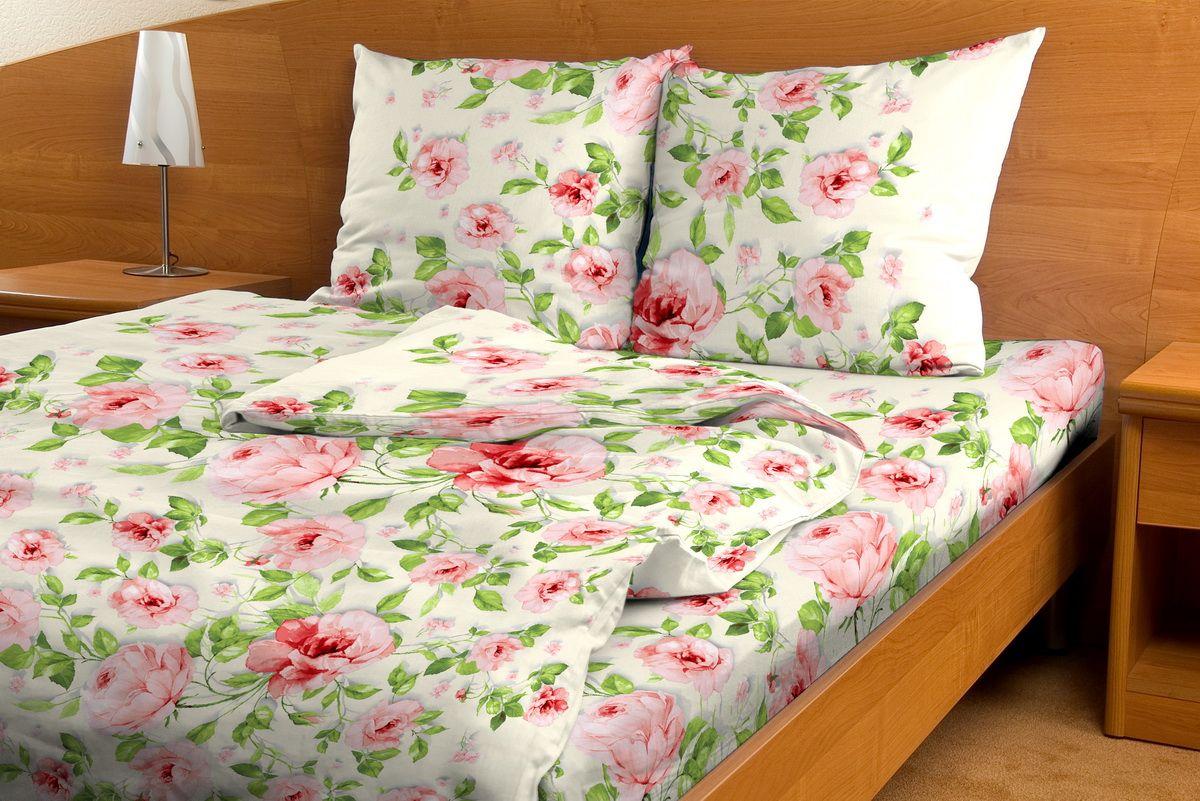 Комплект белья Amore Mio Sharman, 1,5-спальный, наволочки 70x70, цвет: красный391602Комплект постельного белья Amore Mio является экологически безопасным для всей семьи, так как выполнен из бязи (100% хлопок). Комплект состоит из пододеяльника, простыни и двух наволочек. Постельное белье оформлено оригинальным рисунком и имеет изысканный внешний вид.Легкая, плотная, мягкая ткань отлично стирается, гладится, быстро сохнет. Рекомендации по уходу: Химчистка и отбеливание запрещены.Рекомендуется стирка в прохладной воде при температуре не выше 30°С.