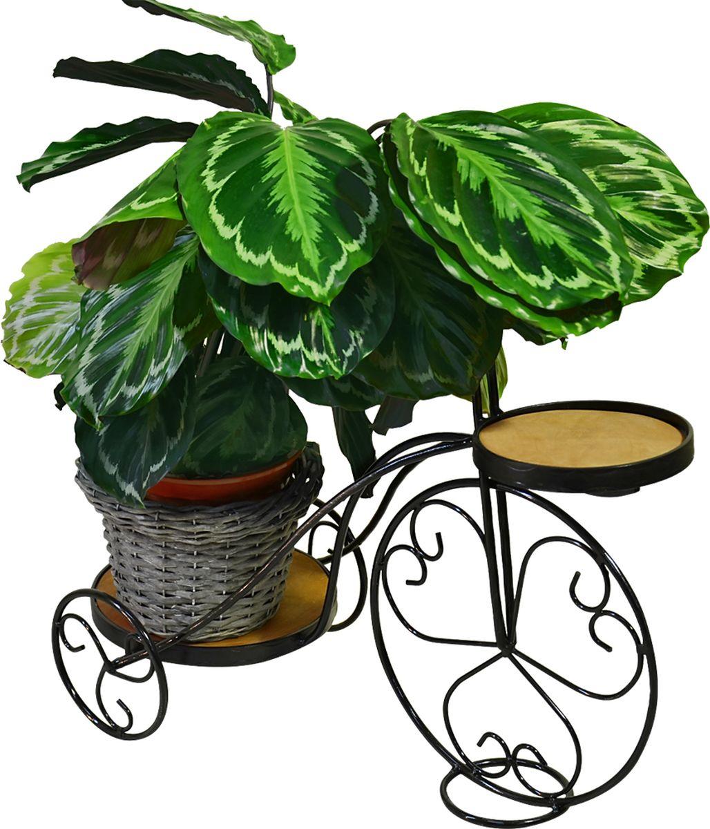 Подставка для цветов Фабрика ковки, на 2 цветка, цвет: черный, коричневый. 59-44214-083-ВОригинальная подставка предназначена для размещения двух цветков. Карскас изготовлен из металла, на котором располагаются подставки из дерева. Роль ножек исполняют изогнутые прутки, которые сплетаются в форму, повторяющую форму велосипеда, обеспечивая устойчивое расположение цветков. Подставка станет прекрасным дизайнерским решением для украшения дома.