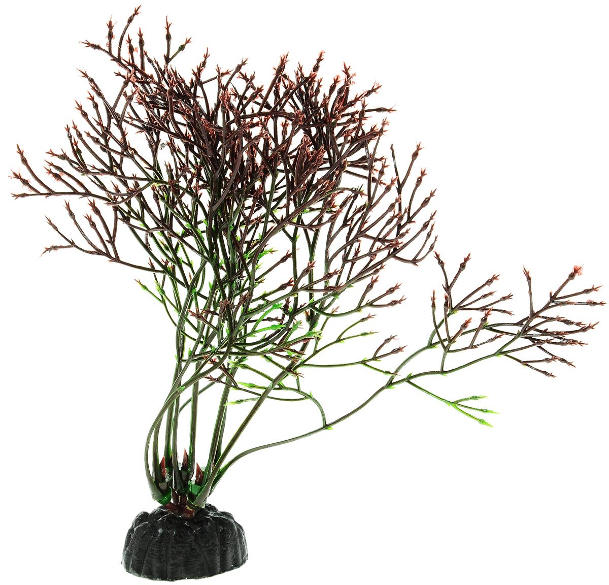 Растение для аквариума Barbus Горгонария, пластиковое, цвет: темно-коричневый, зеленый, высота 10 см0120710Растение для аквариума Barbus Горгонария, выполненное из качественного пластика, станет оригинальным украшением вашего аквариума. Пластиковое растение идеально подходит для дизайна всех видов аквариумов. Оно абсолютно безопасно, не токсично, нейтрально к водному балансу, устойчиво к истиранию краски, подходит как для пресноводного, так и для морского аквариума. Растение Barbus поможет вам смоделировать потрясающий пейзаж на дне вашего аквариума или террариума. Высота растения: 10 см.