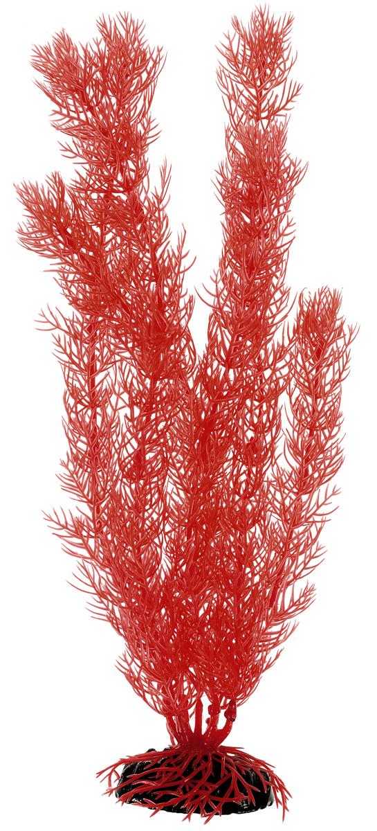Растение для аквариума Barbus Роголистник, пластиковое, цвет: коралловый, высота 30 смAccessory 007Растение для аквариума Barbus Роголистник, выполненное из качественного пластика, станет прекрасным украшением вашего аквариума. Пластиковое растение идеально подходит для дизайна всех видов аквариумов. Оно абсолютно безопасно, нейтрально к водному балансу, устойчиво к истиранию краски, подходит как для пресноводного, так и для морского аквариума. Растение Barbus поможет вам смоделировать потрясающий пейзаж на дне вашего аквариума или террариума. Высота растения: 30 см.