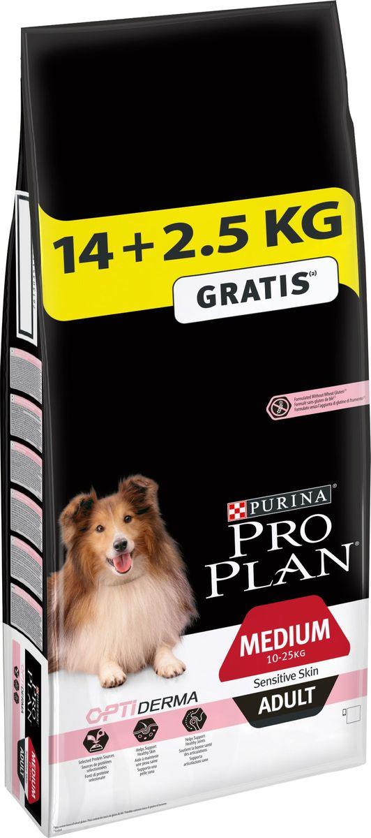 Корм сухой Pro Plan Adult Sensitive, для собак с чувствительным пищеварением и кожей, 14 кг + 2,5 кг в подарок0120710Правильное функционирование пищеварительной системы имеет важное значение для получения питательных веществ, необходимых вашему щенку для развития и роста. Разработанный нашими ветеринарами и диетологами корм Purina® PRO PLAN® с комплексом OPTIDIGEST® повышает здоровье пищеварительной системы щенков, испытывающих дискомфорт в желудочно-кишечном тракте. Клинически доказано: OPTIDIGEST® содержит отобранный источник пребиотиков для улучшения баланса микрофлоры кишечника и качества стула.