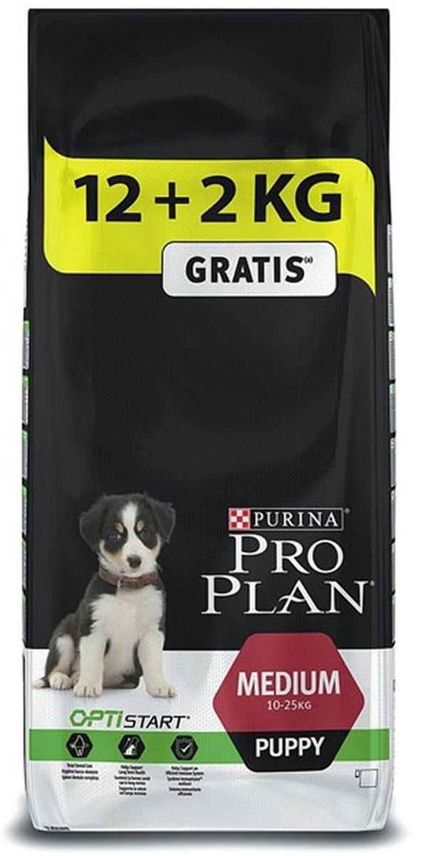 Корм сухой Pro Plan Puppy Medium, для щенков, с комплексом Optistart, 12 кг + 2 кг в подарок0120710При взгляде на здоровую собаку или кошку становится очевидной польза питания пищей высшего качества. Именно поэтому в состав кормов Pro Plan входят только ингредиенты высшего качества, обеспечивающие Вашему питомцу долгую жизнь и здоровье. Разработанные ветеринарами и диетологами компании Purina корма Pro Plan включают комбинацию незаменимых питательных веществ в пропорциях, обеспечивающих оптимальное функционирование защитных систем Вашего питомца. Результатом научных исследований является полнорационный корм, обеспечивающий природную защиту на всем протяжении жизни.