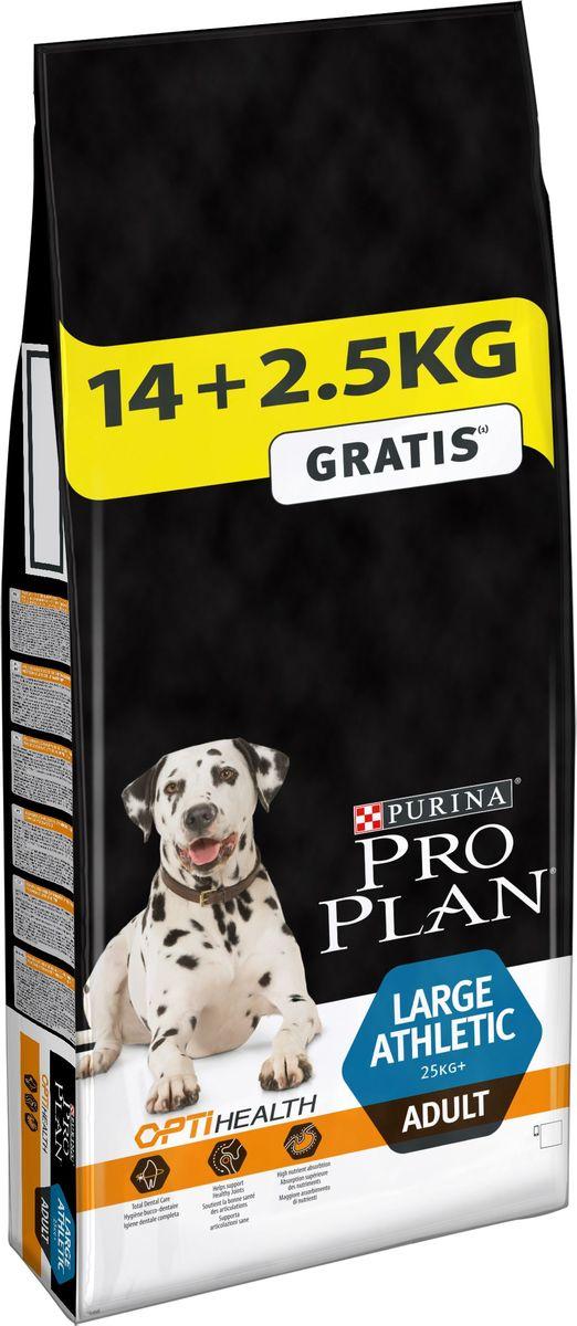 Корм сухой Pro Plan Adult Large Athletic, для собак крупных пород, 14 кг + 2,5 кг в подарок0120710При взгляде на здоровую собаку или кошку становится очевидной польза питания пищей высшего качества. Именно поэтому в состав кормов Pro Plan входят только ингредиенты высшего качества, обеспечивающие Вашему питомцу долгую жизнь и здоровье. Разработанные ветеринарами и диетологами компании Purina корма Pro Plan включают комбинацию незаменимых питательных веществ в пропорциях, обеспечивающих оптимальное функционирование защитных систем Вашего питомца. Результатом научных исследований является полнорационный корм, обеспечивающий природную защиту на всем протяжении жизни.
