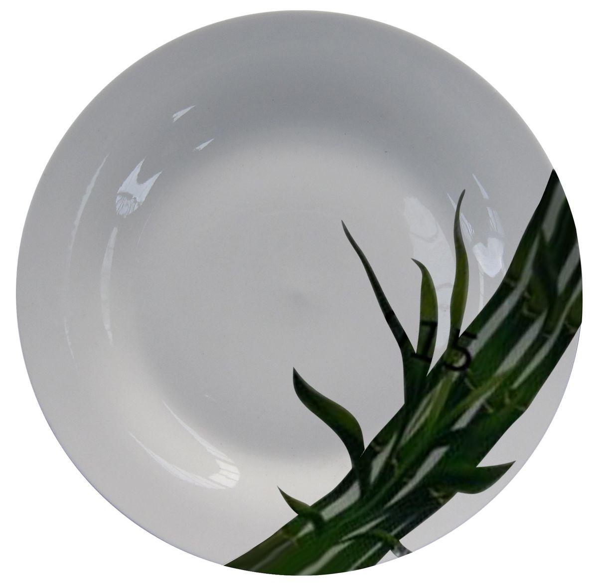Тарелка МФК-профит Бамбук, диаметр 18 смVT-1520(SR)Тарелка МФК-профит, изготовленная из стеклокерамики, украшена ярким рисунком. Изящный дизайн придется по вкусу и ценителям классики, и тем, кто предпочитает утонченность.Такая тарелка идеально подойдет для сервировки стола и станет отличным подарком к любому празднику.