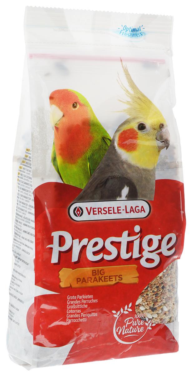 Корм для средних попугаев Versele-Laga Big Parakeet, 1 кг0120710Корм Versele-Laga Big Parakeet - это полноценная зерновая смесь для всех видов средних попугаев. Смесь обогащена дополнительными питательными веществами, которые необходимы попугаям для поддержания хорошей кондиции. Эта смесь состоит из отобранных семян и дополнительно обогащена витаминами, аминокислотами и минералами.Товар сертифицирован.