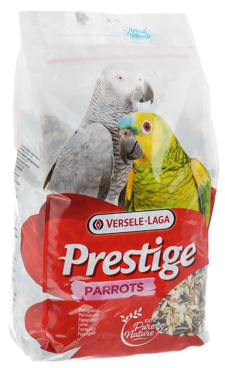 Корм для крупных попугаев Versele-Laga Prestige Parrots, 1 кг421795Корм Versele-Laga Prestige Parrots - это традиционная полнорационная смесь для крупных попугаев.В состав данной высококачественной смеси входят разнообразные сбалансированные компоненты, особым образом подобранные в соответствии со специфическими пищевыми потребностями попугаев. Корм содержит семена, зерновые и орехи для оптимальной кондиции и пищеварения.Товар сертифицирован.
