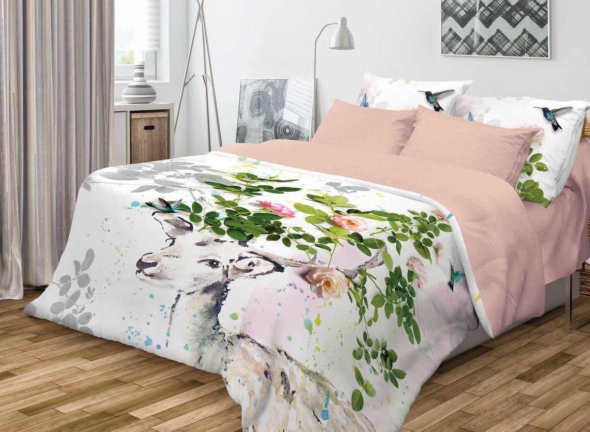Комплект белья Волшебная ночь Skazka, 2-спальный, наволочки 50x70, цвет: белый, розовый68/5/4Роскошный комплект постельного белья Волшебная ночь Skazka выполнен из натурального ранфорса (100% хлопка) и украшен оригинальным рисунком. Комплект состоит из пододеяльника, простыни и двух наволочек. Ранфорс - это новая современная гипоаллергенная ткань из натуральных хлопковых волокон, которая прекрасно впитывает влагу, очень проста в уходе, а за счет высокой прочности способна выдерживать большое количество стирок. Высочайшее качество материала гарантирует безопасность.Доверьте заботу о качестве вашего сна высококачественному натуральному материалу.