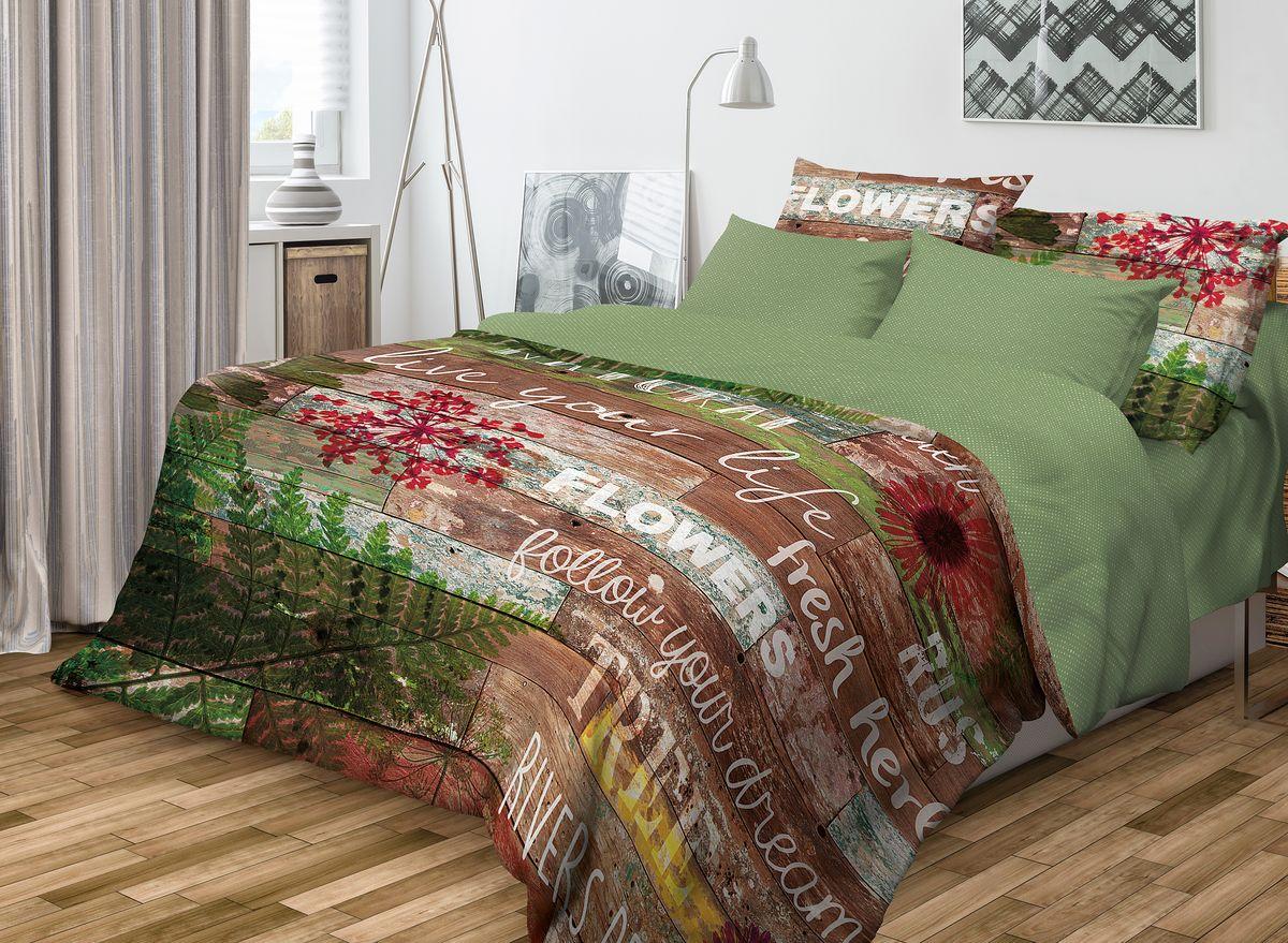 Комплект белья Волшебная ночь Natural, евро, наволочки 70x70, цвет: зеленый, коричневый. 701962391602Роскошный комплект постельного белья Волшебная ночь Natural выполнен из натурального ранфорса (100% хлопка) и оформлен оригинальным рисунком. Комплект состоит из пододеяльника, простыни и двух наволочек. Ранфорс - это новая современная гипоаллергенная ткань из натуральных хлопковых волокон, которая прекрасно впитывает влагу, очень проста в уходе, а за счет высокой прочности способна выдерживать большое количество стирок. Высочайшее качество материала гарантирует безопасность.
