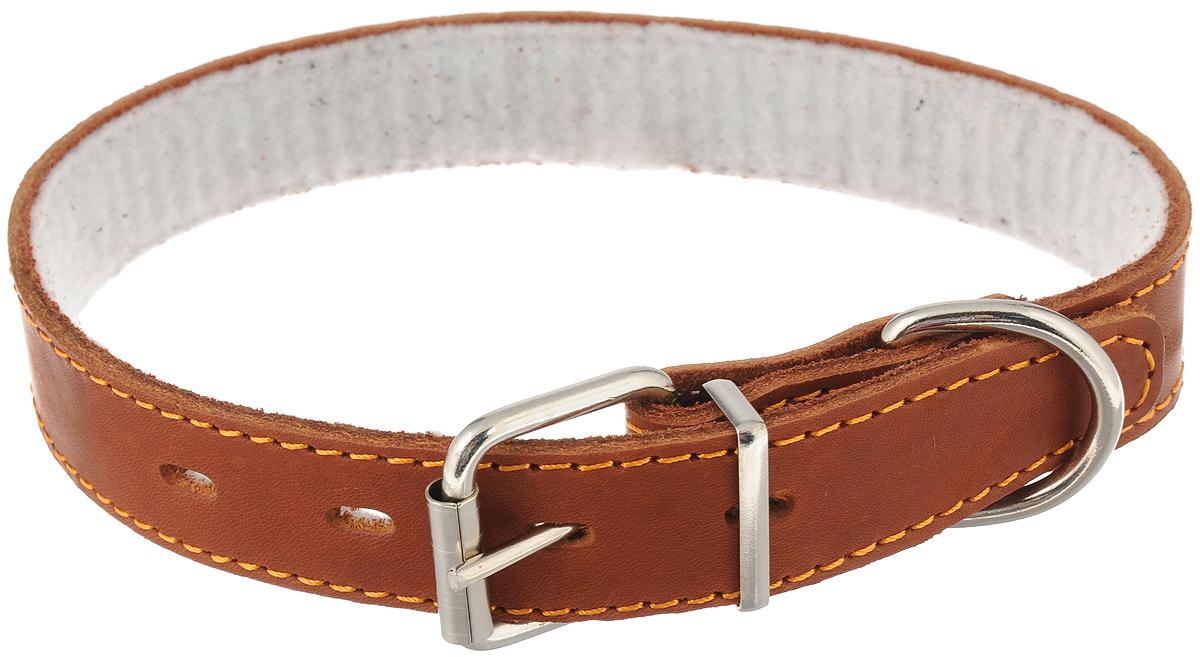 """Ошейник для собак Каскад """"Классика"""", с синтепоном, цвет: коричневый, ширина 3 см, обхват шеи 44-53 см"""