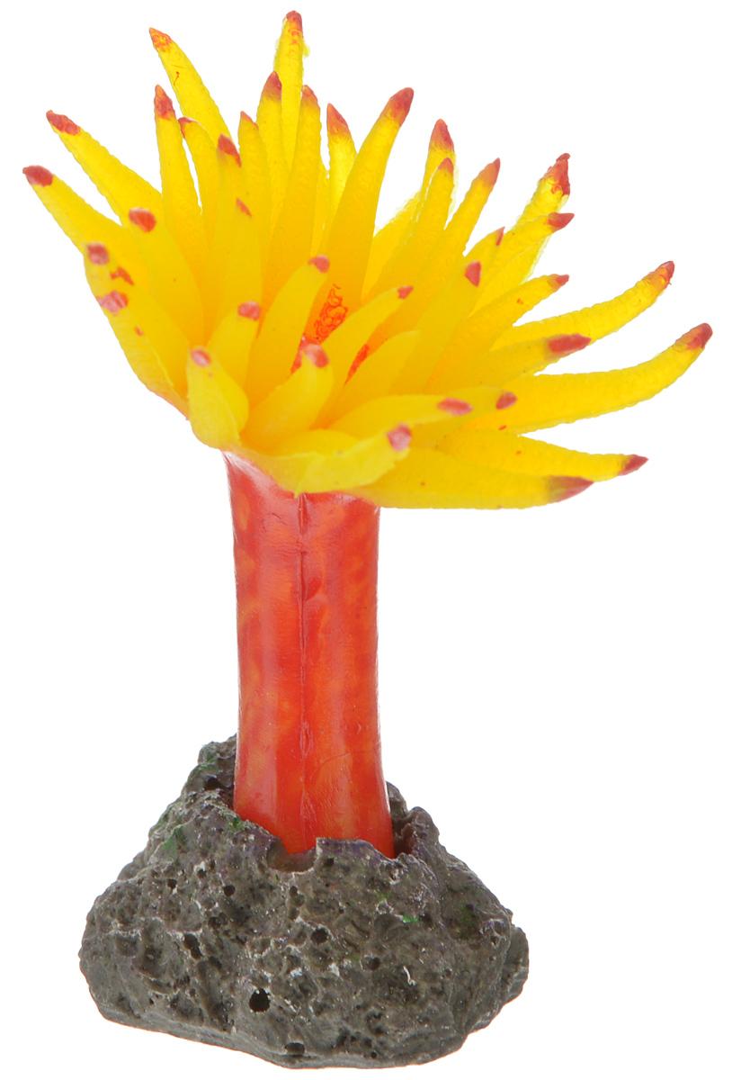 Декорация для аквариума Barbus Коралл, силиконовая, цвет: желтый, красный, 5,5 х 5,5 х 6,5 см0120710Декорация для аквариума Barbus Коралл, выполненная из высококачественного силикона, станет оригинальным украшением вашего аквариума. Изделие отличается реалистичным исполнением, в воде создается полная имитация настоящего коралла. Декорация абсолютно безопасна, нейтральна к водному балансу, устойчива к истиранию краски, не токсична, подходит как для пресноводного, так и для морского аквариума. Благодаря декорациям Barbus вы сможете смоделировать потрясающий пейзаж на дне вашего аквариума.