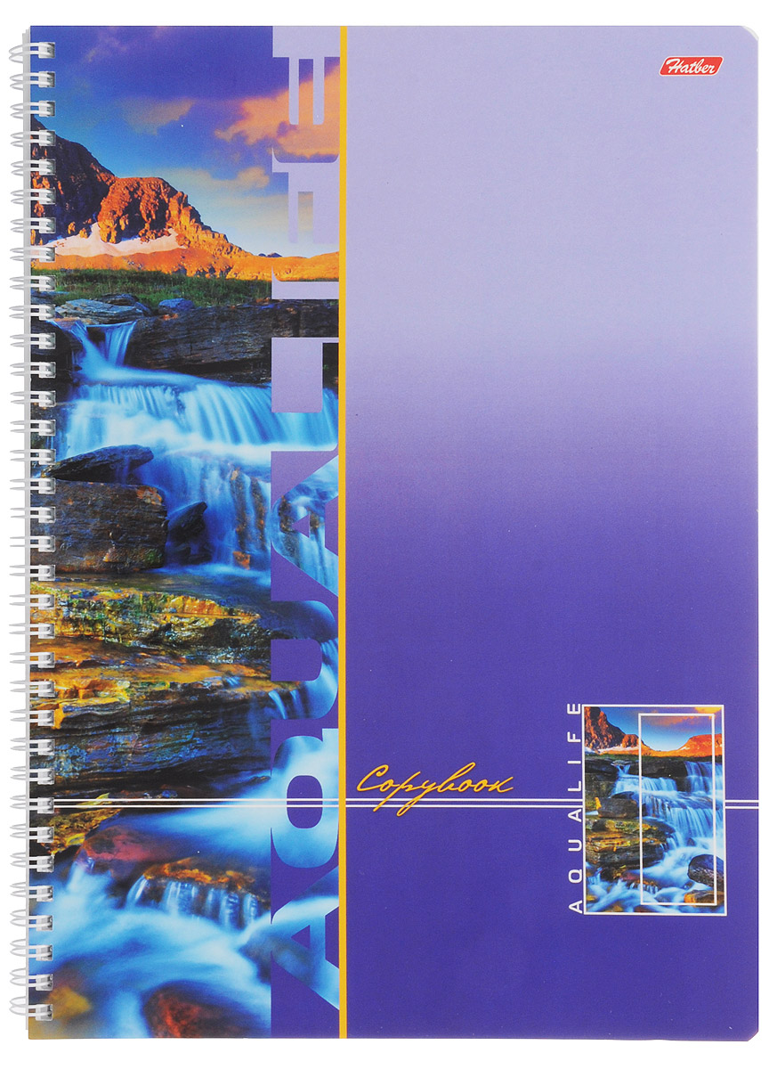 Hatber Тетрадь Аквалайф 96 листов в клетку цвет фиолетовый39839Тетрадь Hatber Аквалайф отлично подойдет для школьников, студентов и офисных работников.Обложка, выполненная из плотного картона, позволит сохранить тетрадь в аккуратном состоянии на протяжении всего времени использования. Лицевая сторона оформлена изображением горной реки.Внутренний блок тетради, соединенный металлическим гребнем, состоит из 96 листов белой бумаги. Стандартная линовка в клетку голубого цвета без полей.