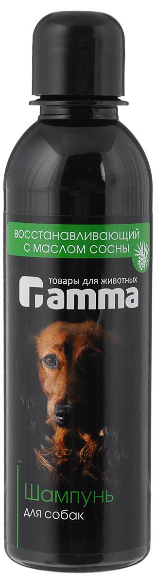Шампунь для собак Гамма, восстанавливающий, 250 мл0120710Шампунь Гамма на эфирном масле сосны способствует сохранению насыщенного цвета и естественного блеска шерстного покрова животного. Активные компоненты создают неблагоприятные условия для развития инфекций и эффективно восстанавливают кожу, снимая зуд и раздражение. Предназначен для профессионального регулярного ухода за кожно-волосяным покровом собак, утратившим здоровый внешний вид вследствие нарушения роста и здоровья волос и перенесенных кожных заболеваний. Товар сертифицирован.