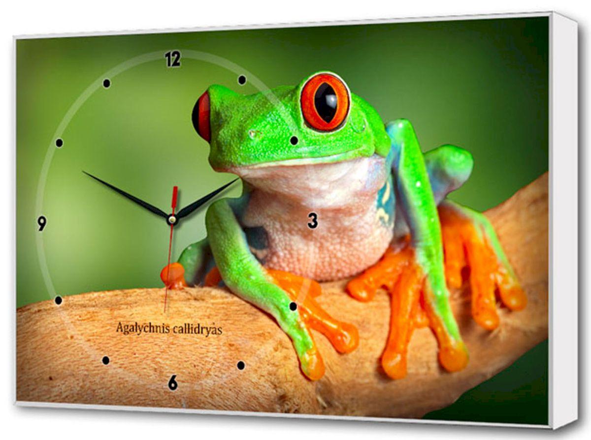Часы-картина Toplight Животные, 60 х 37 см. TL-C502394672Настенные часы-картина Toplight Животные выполнены из бумаги и оргалита, рама из МДФ. Часы имеют кварцевый механизм с плавным, бесшумным ходом и три стрелки: часовую, минутную и секундную. Современные технологии и цифровая печать, используемые в производстве, делают постер устойчивым к выцветанию и обеспечивают исключительное качество произведений. Благодаря наличию необходимых креплений в комплекте установка не займет много времени.Часы-картина Toplight - это прекрасная возможность создать яркий акцент при оформлении любого помещения.Правила ухода: можно протирать сухой, мягкой тканью. Часы работают от 1 батарейки типа АА (не входит в комплект).