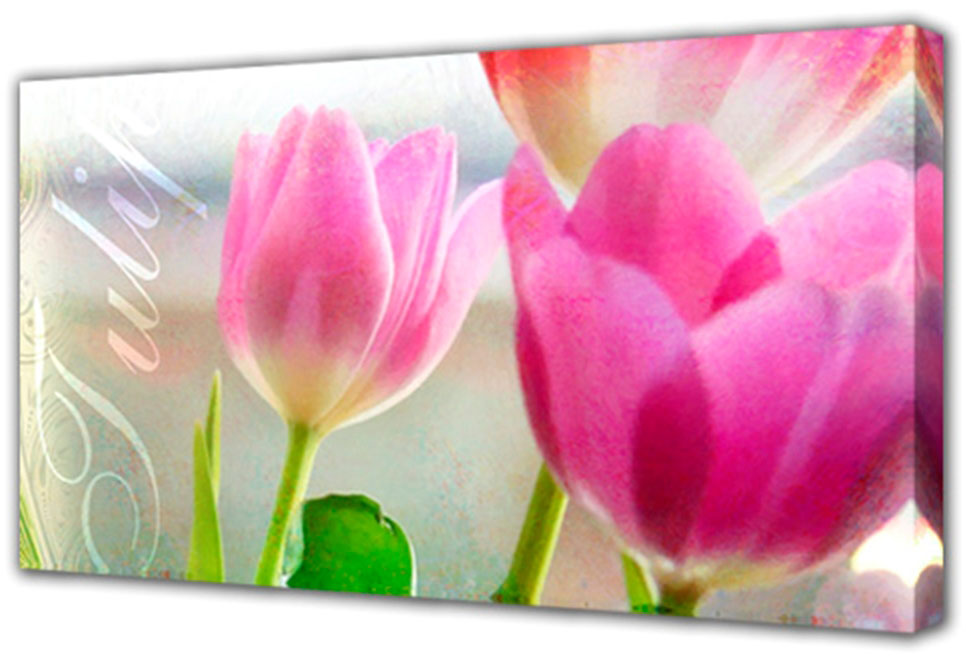 Холст Toplight Цветы, 100 х 50 см. TL-H3015AG 30-48Холст Toplight Цветы выполнен из синтетического полотна, подрамник из МДФ. Изделие выглядит очень аккуратно и эстетично благодаря такому способу оформления как галерейная натяжка. Подрамник исключает провисание полотна. Современные технологии, уникальное оборудование и цифровая печать, используемые в производстве, делают постер устойчивым к выцветанию и обеспечивают исключительное качество произведений. Благодаря наличию необходимых креплений в комплекте установка не займет много времени. Холст Topligh - это прекрасная возможность создать яркий акцент при оформлении любого помещения. Правила ухода: можно протирать сухой, мягкой тканью. Толщина подрамника: 3 см.