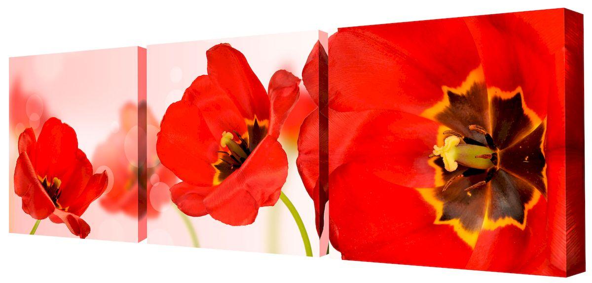 Картина модульная Toplight Цветы, 150 х 50 см. TL-M2048RG-D31SМодульная картина Toplight Цветы выполнена из синтетического полотна, подрамник из МДФ. Картина состоит из трех частей и выглядит очень аккуратно и эстетично благодаря такому способу оформления как галерейная натяжка. Подрамник исключает провисание полотна. Современные технологии, уникальное оборудование и цифровая печать, используемые в производстве, делают постер устойчивым к выцветанию и обеспечивают исключительное качество произведений. Благодаря наличию необходимых креплений в комплекте установка не займет много времени. Модульная картина - это прекрасная возможность создать яркий акцент при оформлении любого помещения. Изделие обязательно привлечет внимание и подарит немало приятных впечатлений своим обладателям. Правила ухода: можно протирать сухой, мягкой тканью. Рекомендованное расстояние между сегментами: 2 см. Толщина подрамника: 3 см.